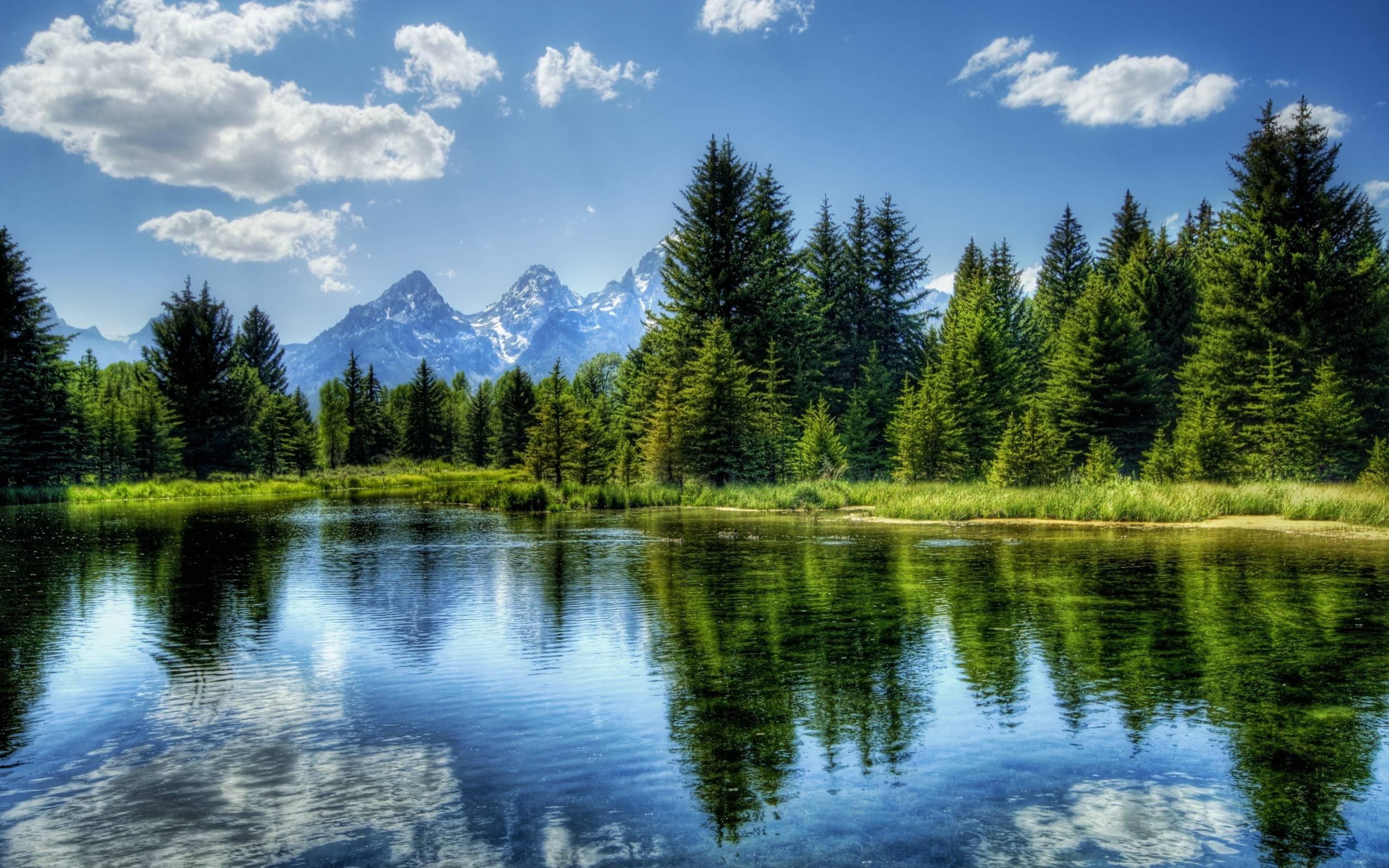 Открытка, открытка с озером