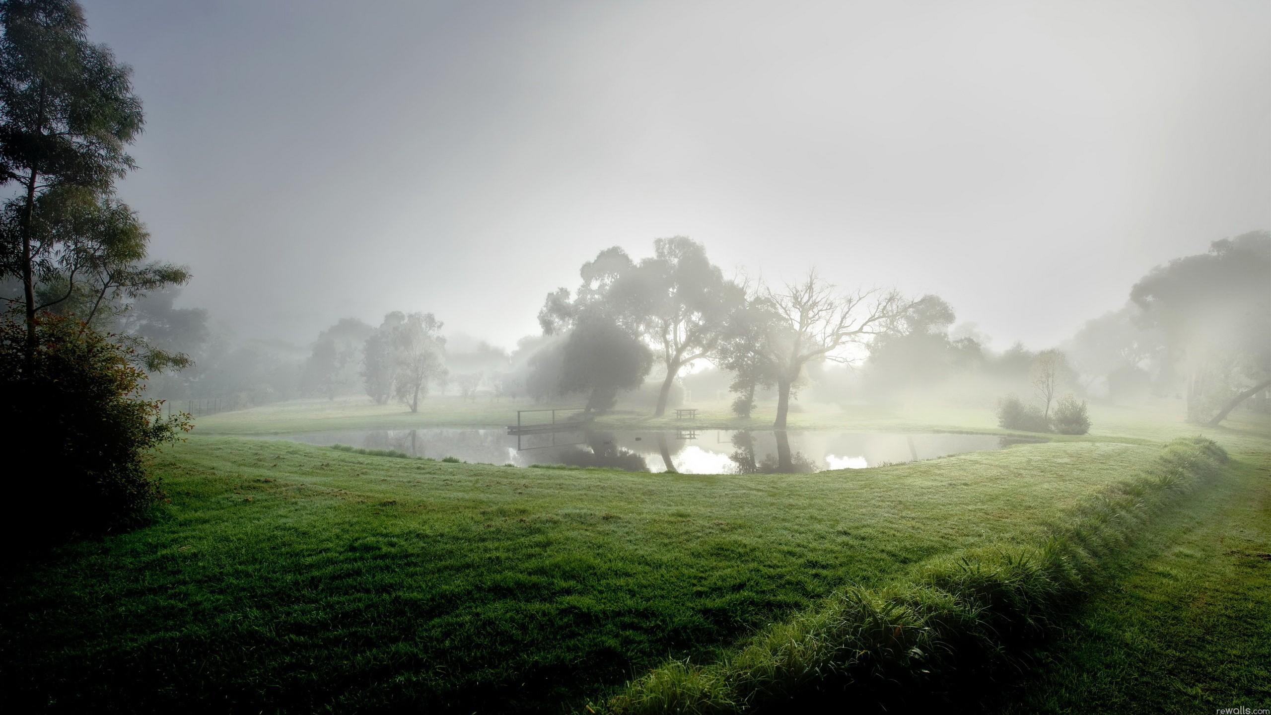 красивые фото пейзаж сад в тумане вкусный меренговый рулет