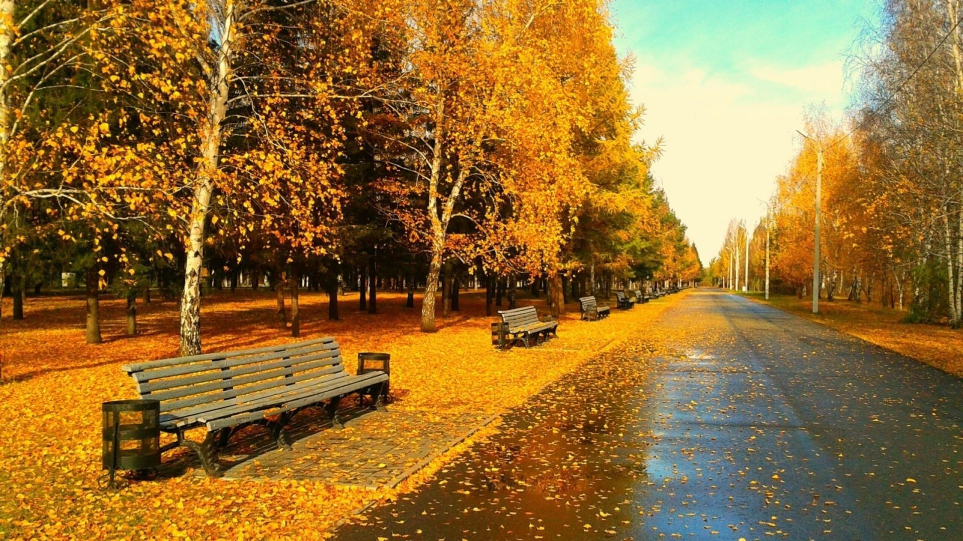 <b>Autumn</b> Central <b>Park</b> Nature New York <b>City Parks</b> Paths Roads ...