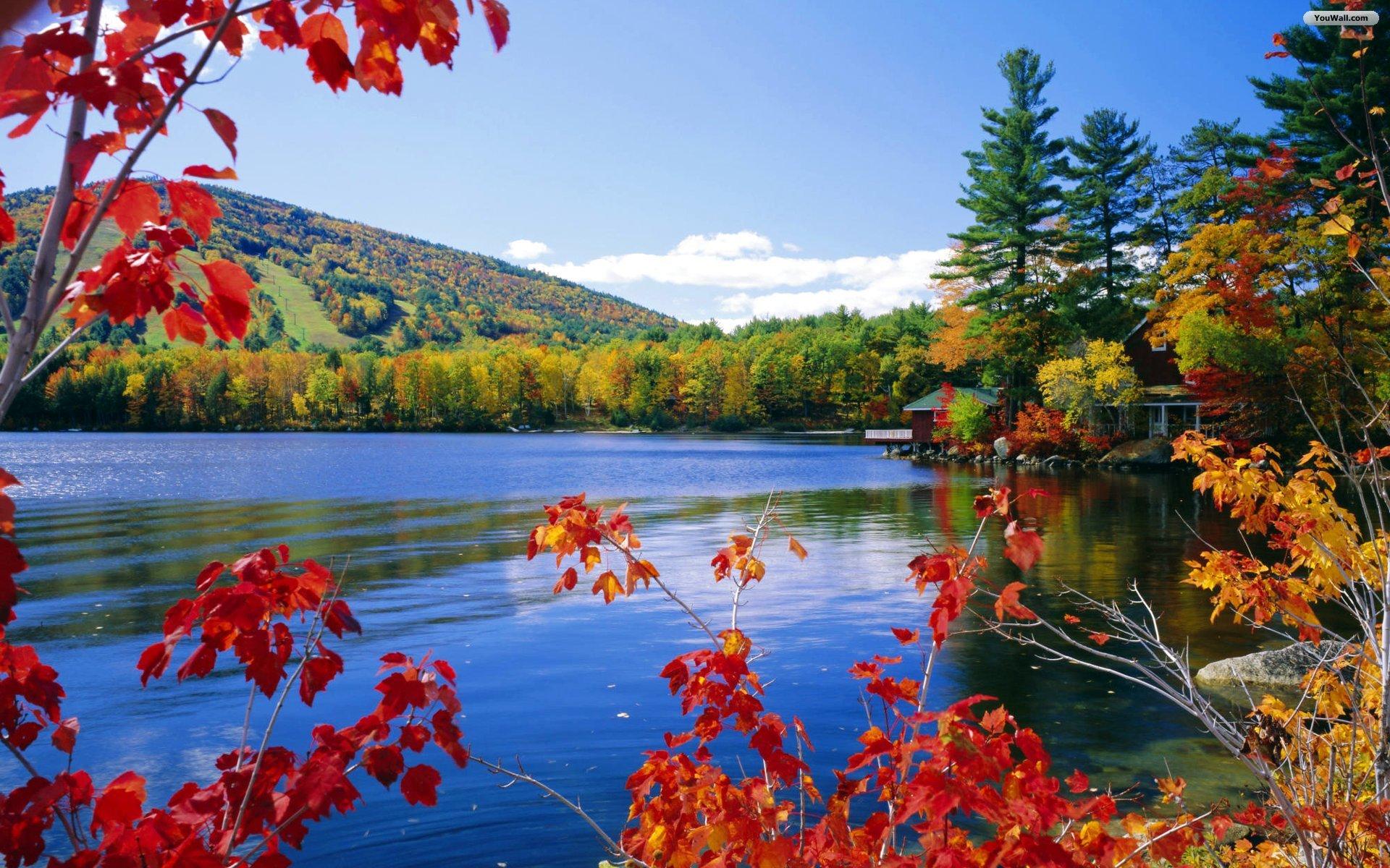 Осень природа картинки для рабочего стола