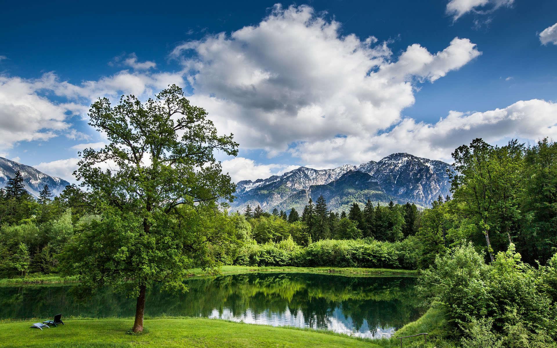 Картинки красивые природа лето
