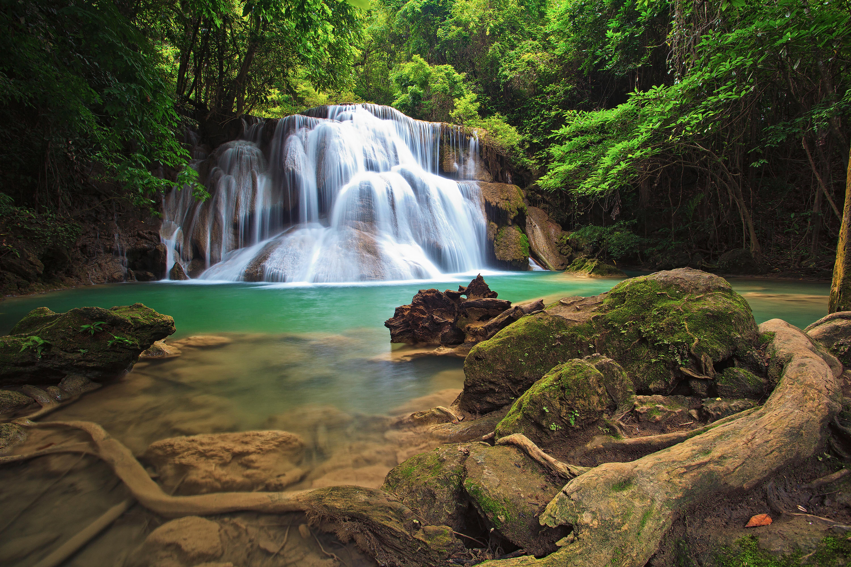 картинки леса с водопадом фанатских тату неразрывно