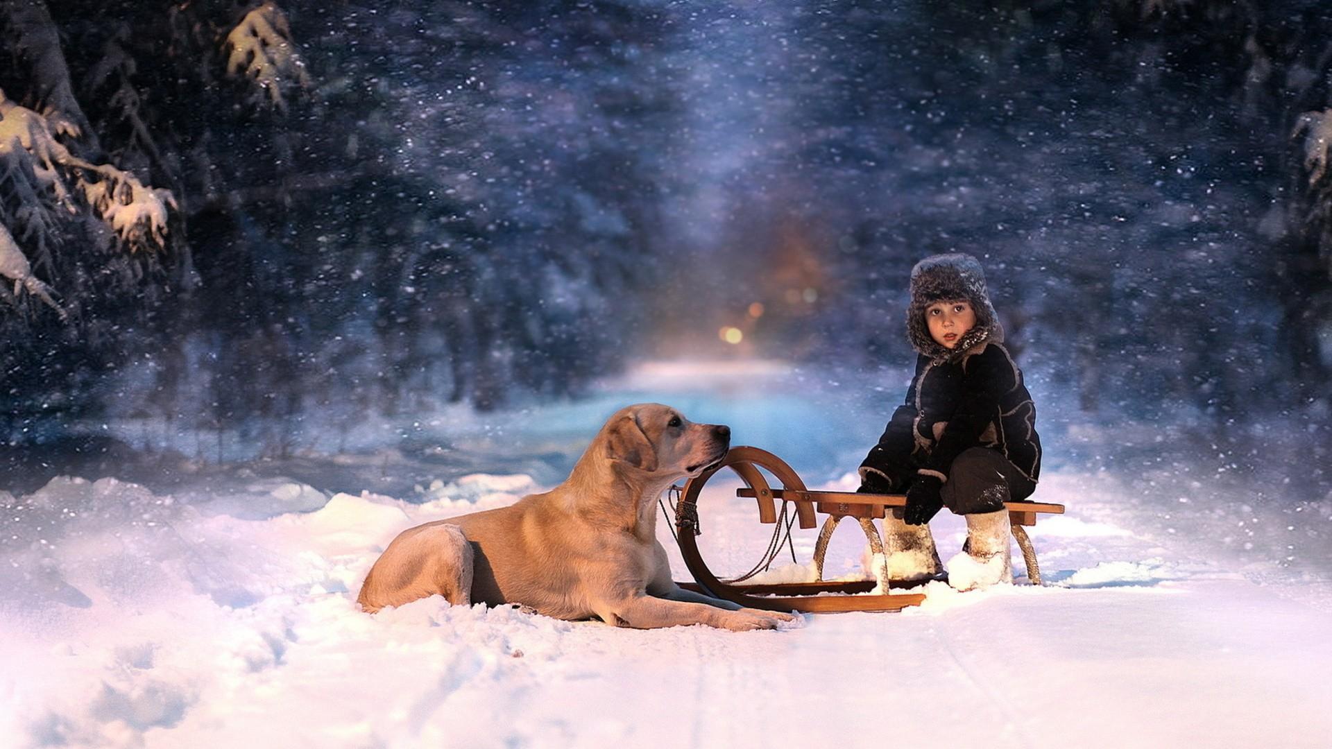 Zastaki.com - Собака и ребенок на санках