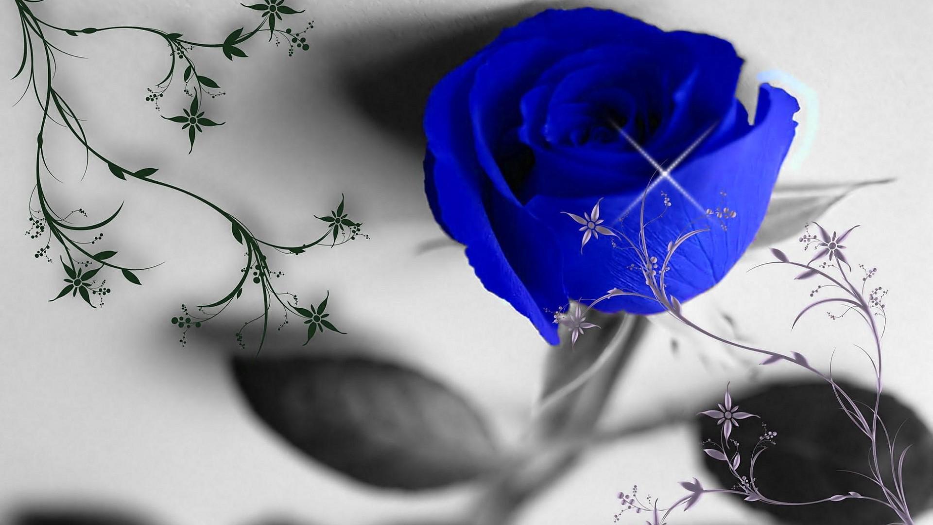 Прикольная, синяя роза картинки на аву