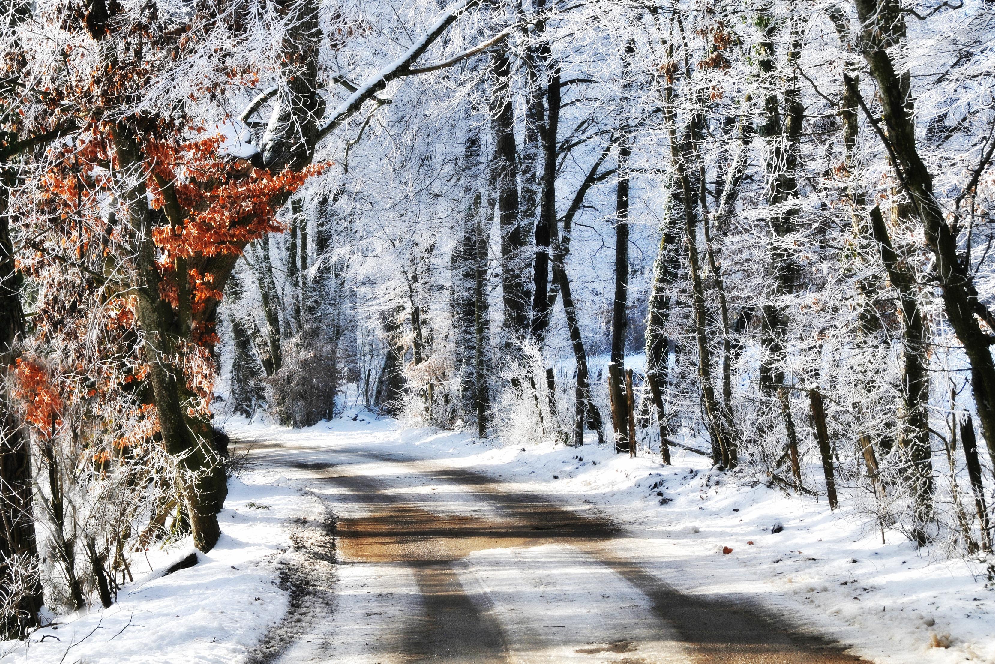 Пейзаж север зима фото оттенок