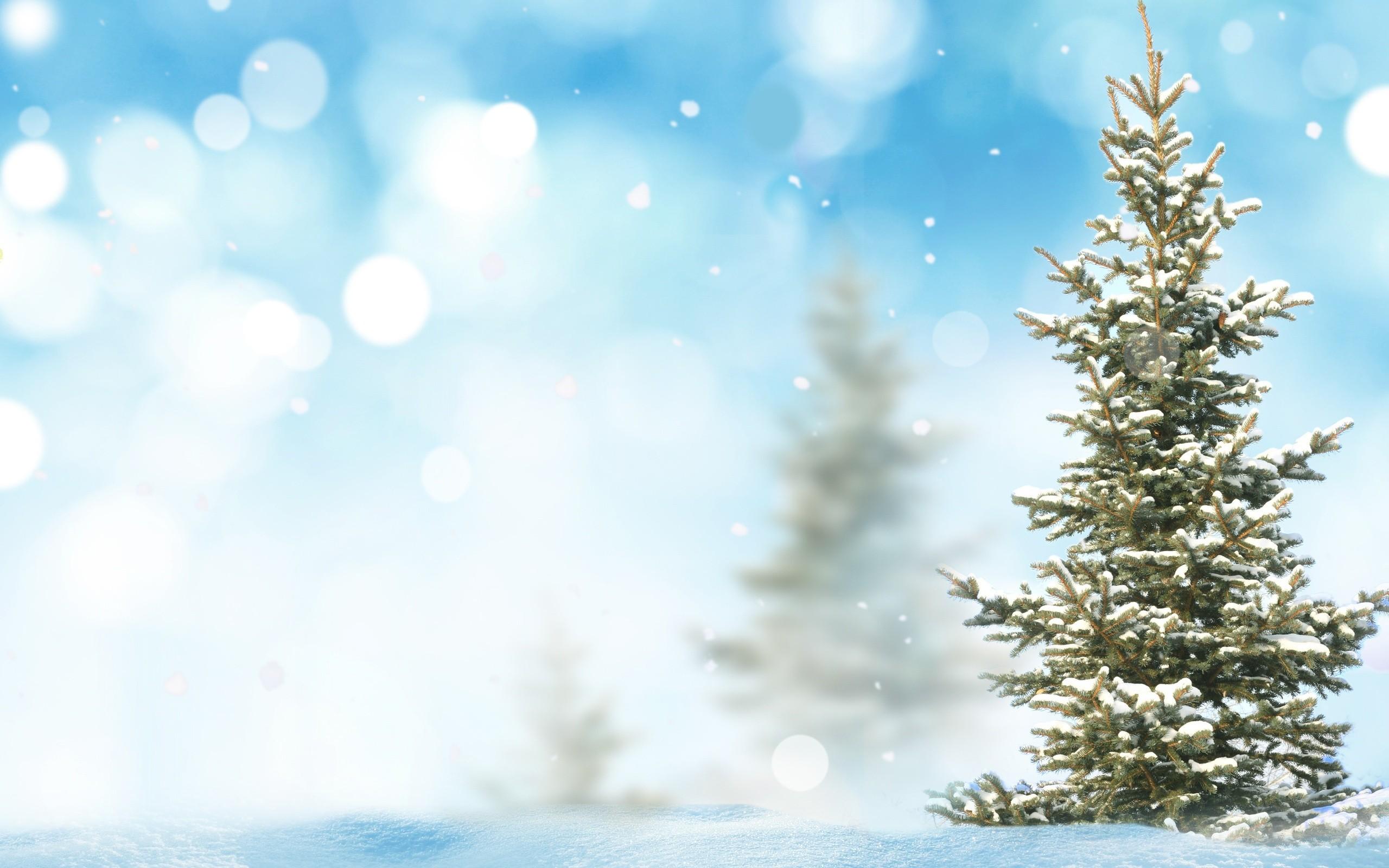 Фоны картинки зимние