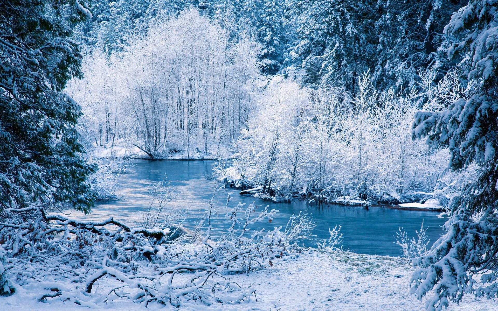Природа зима картинки на рабочий стол