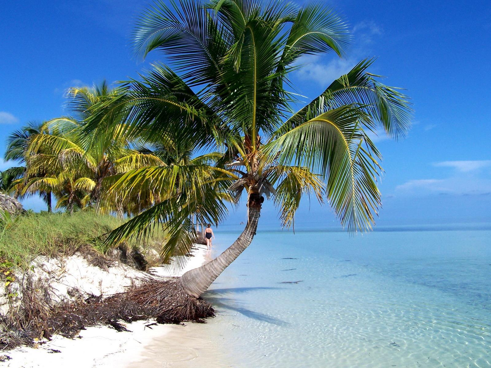 Pilar Beach Cayo Guillermo - Best Beach in Cuba with ...  |Beach Cayo Guillermo Cuba
