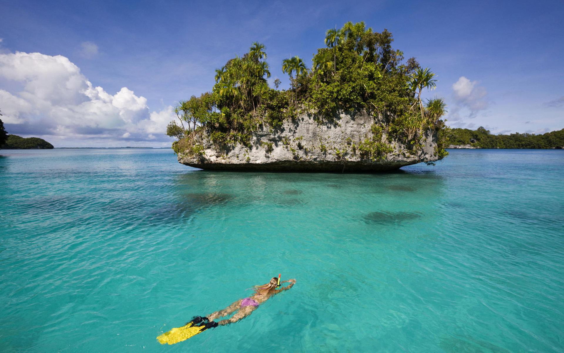 леопард картинки красоты островов королевской