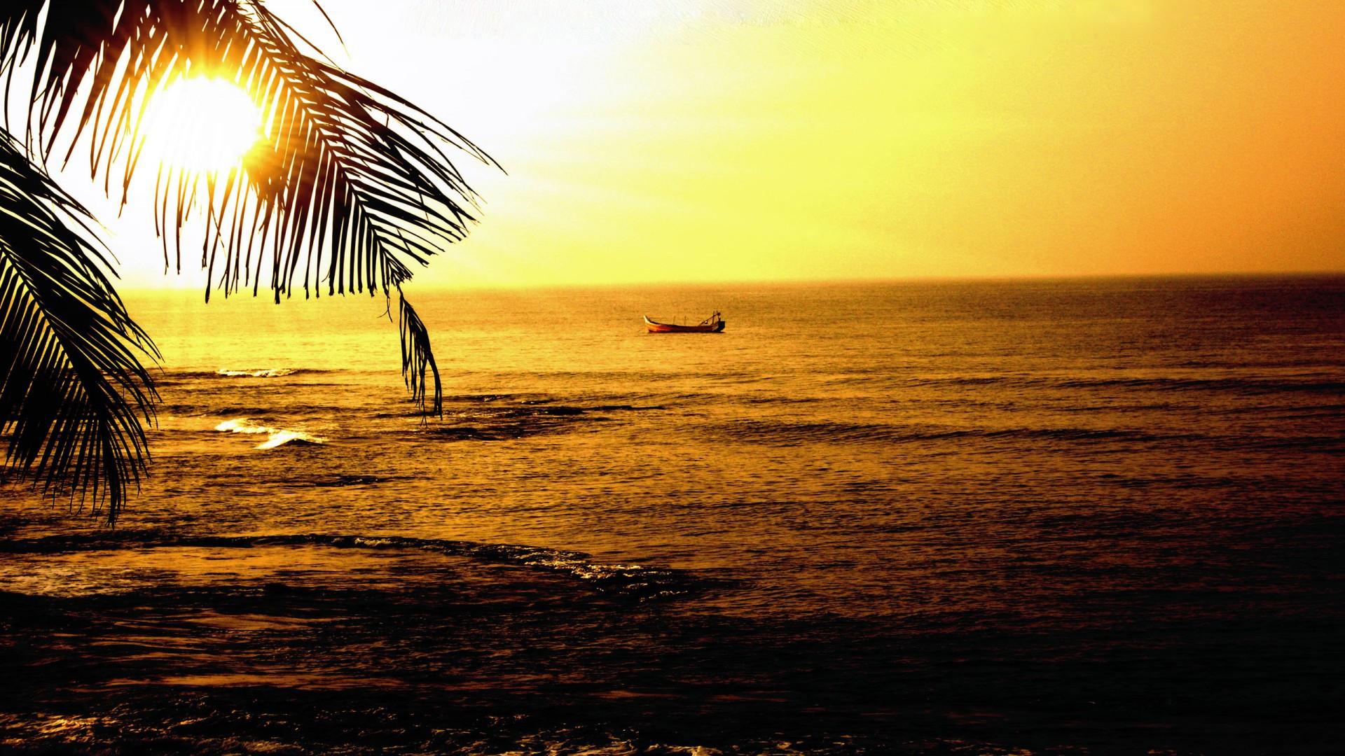 трезвое индийское солнце фотообои приготовления