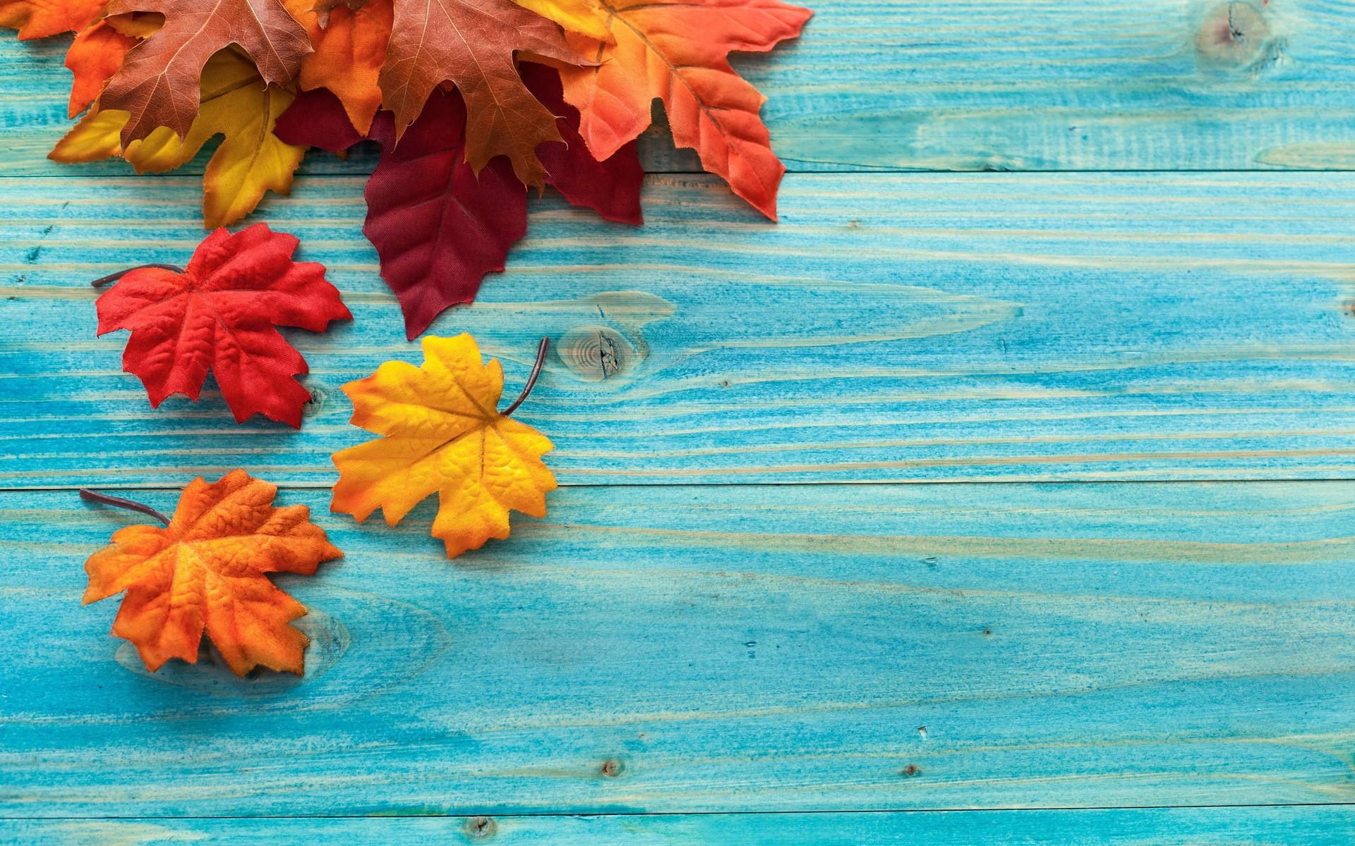 Осенние листья на голубых досках - обои для рабочего стола, картинки, фото