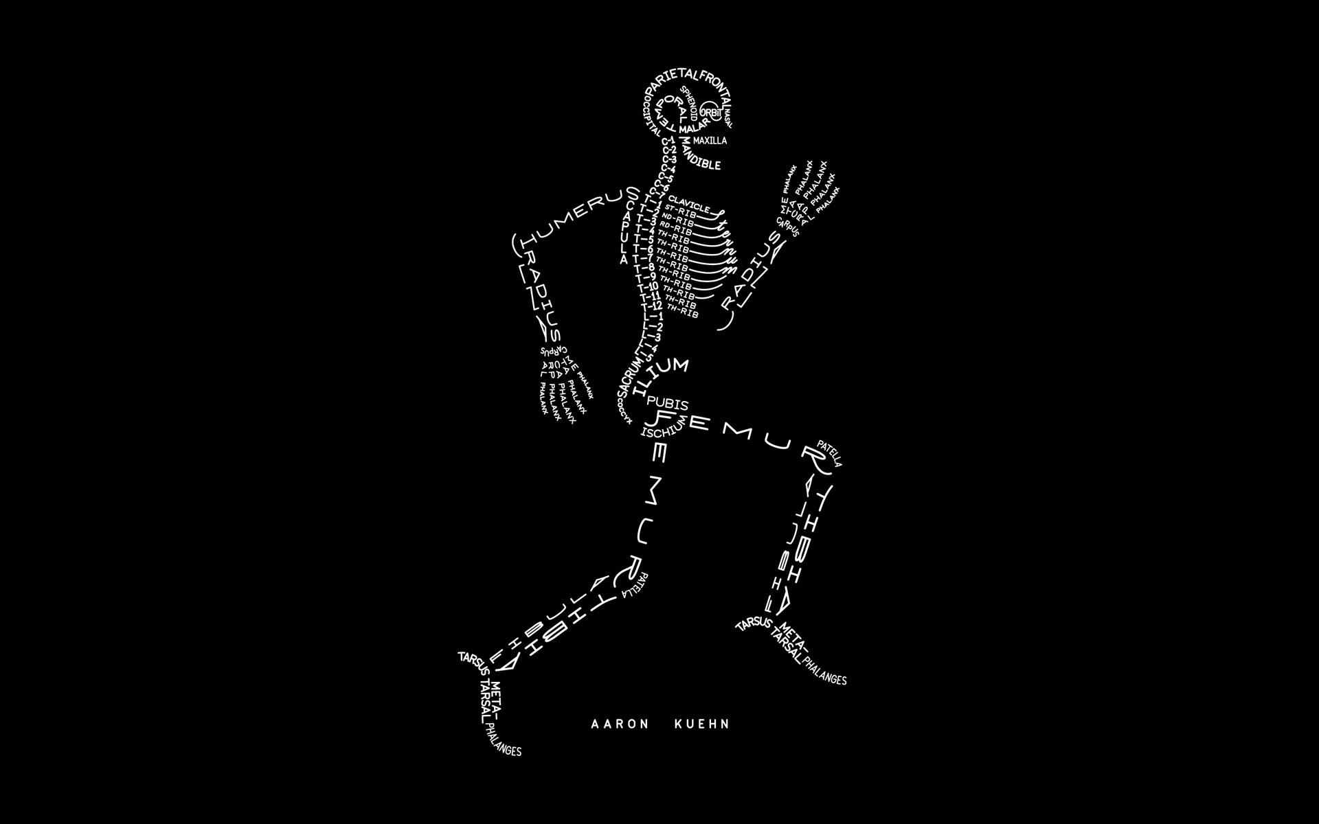 Движущиеся картинки на телефон скелеты