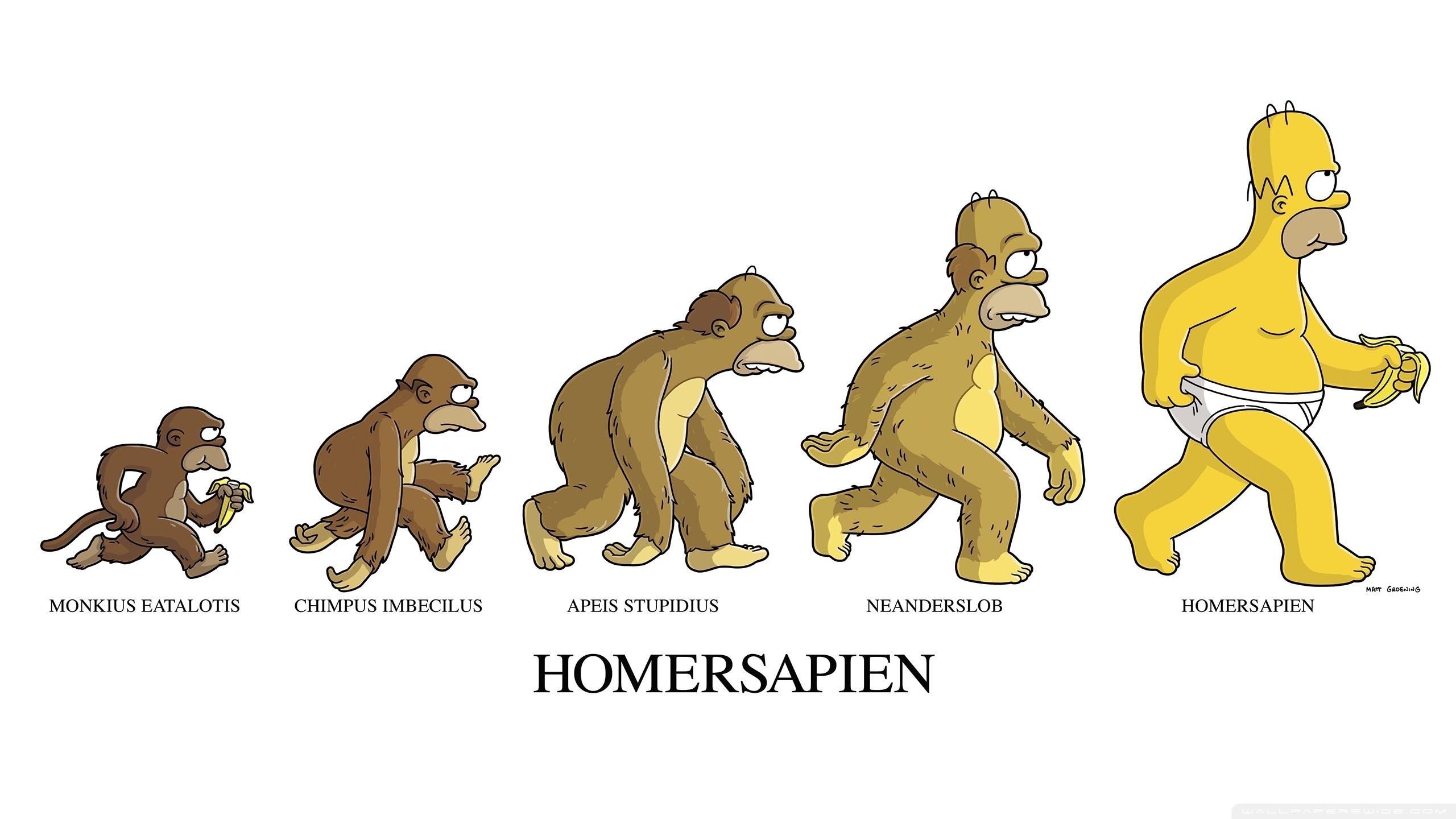Смешная картинка эволюция, ревность смешные