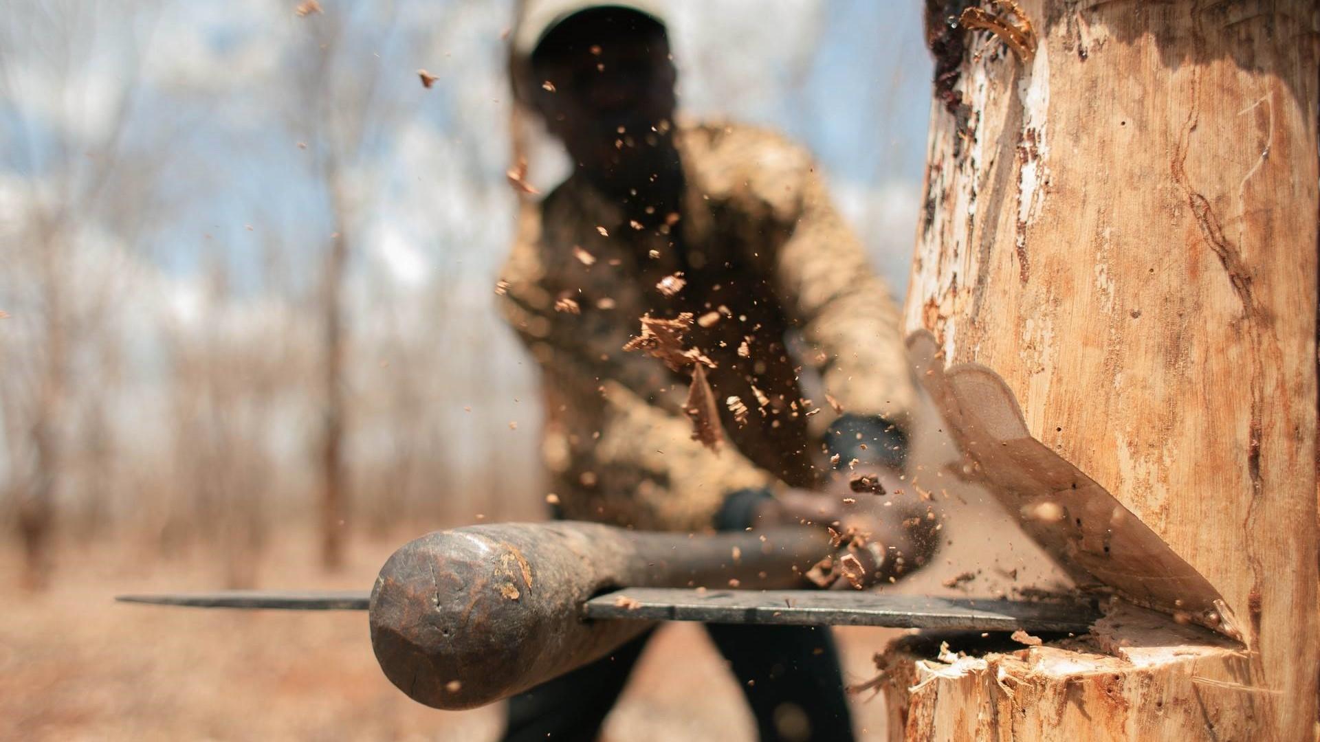 ощущения картинки лесорубы рубят лес конце марта разработчики