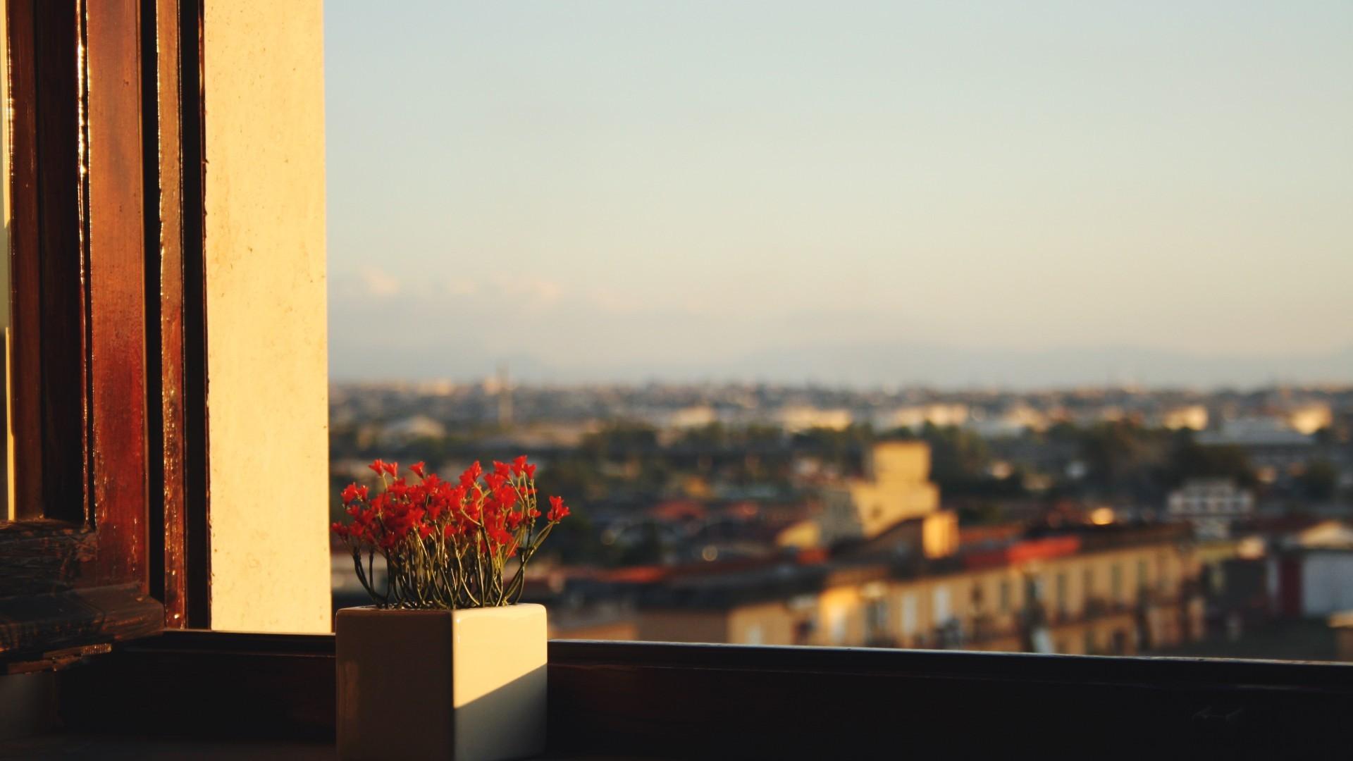 фото были прикольные фото рассвета на балконе любимой девочке свете