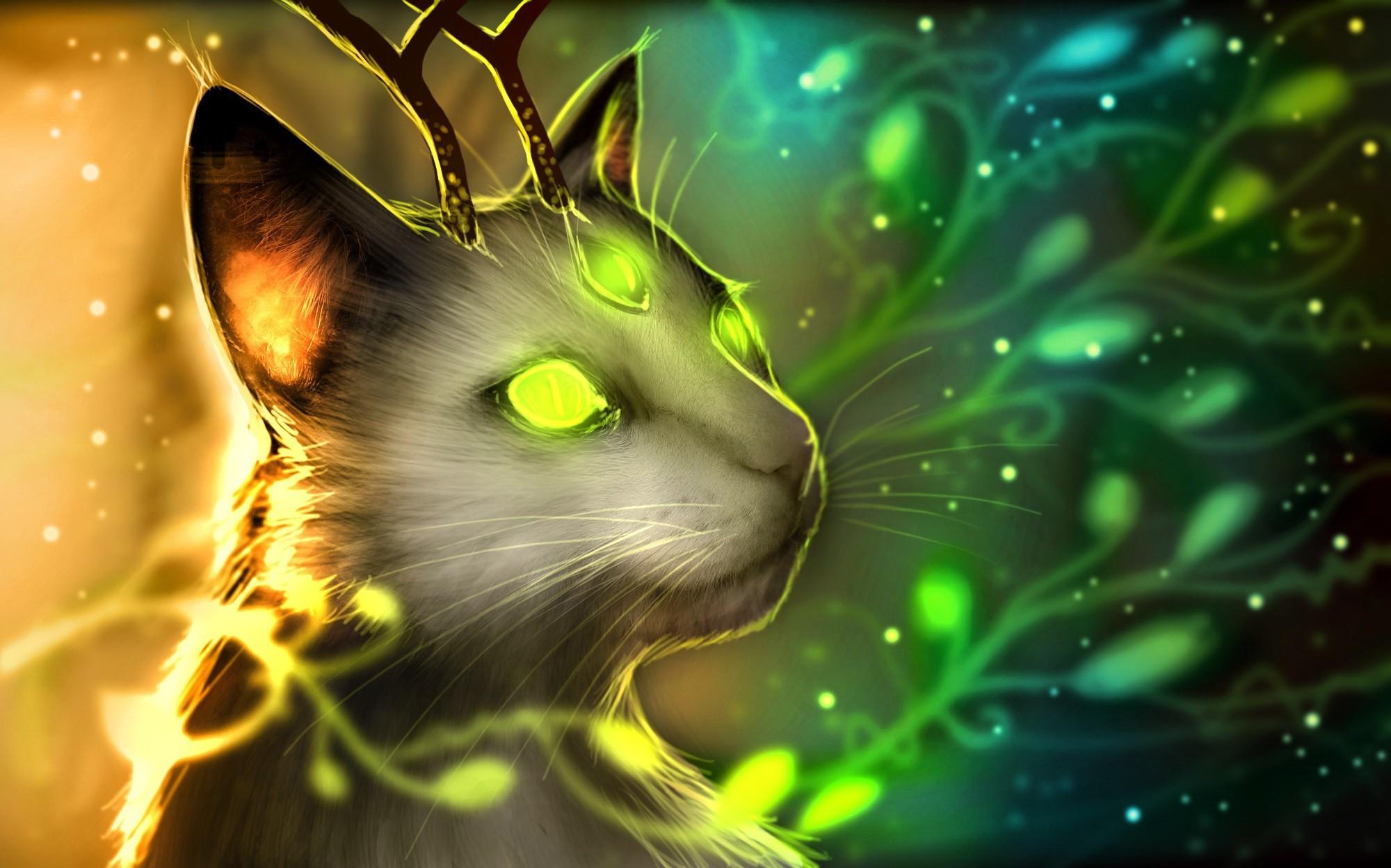 Картинка загадочный кот спирс, увидев