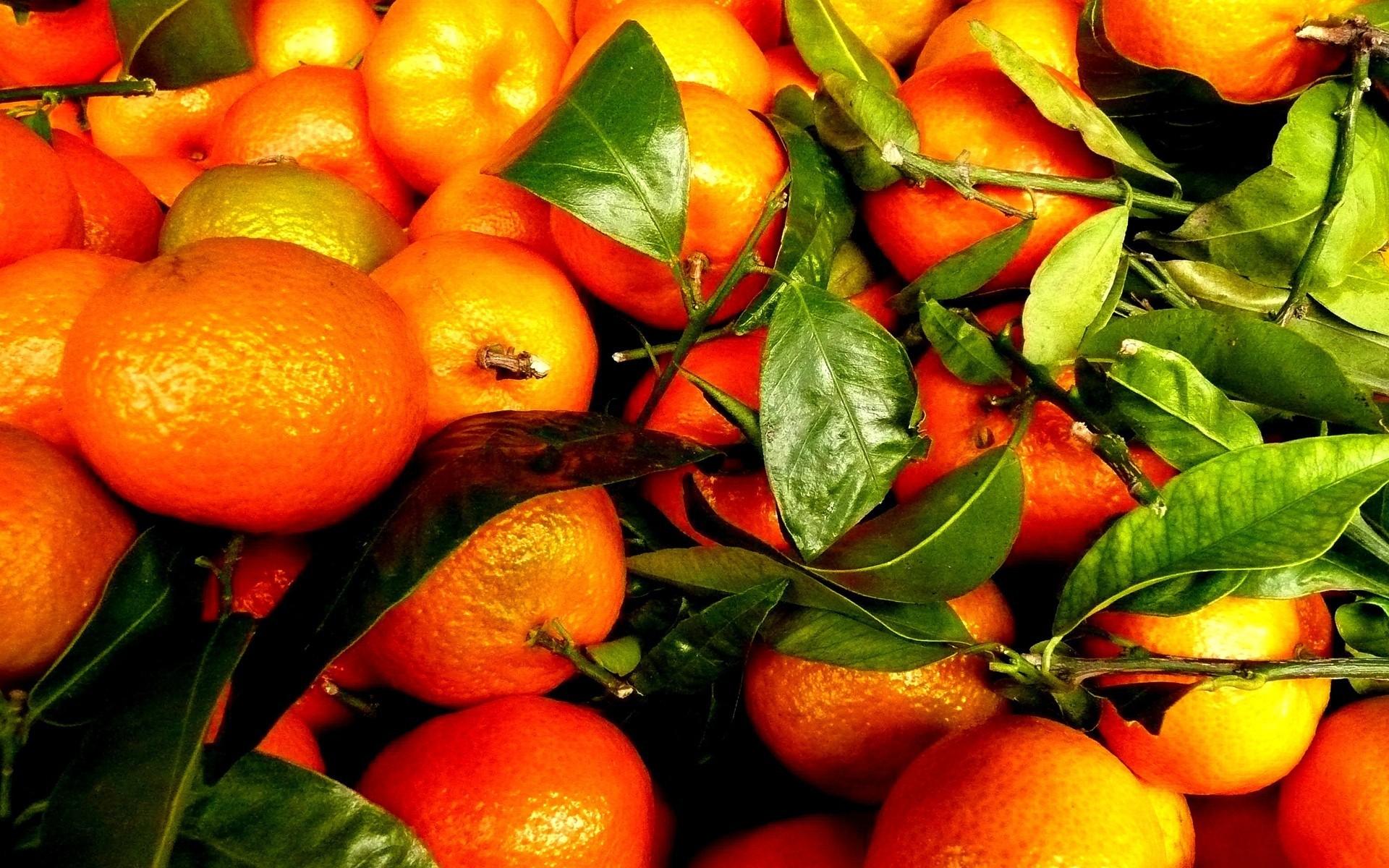 фото апельсинов на рабочий стол торта можно дополнить