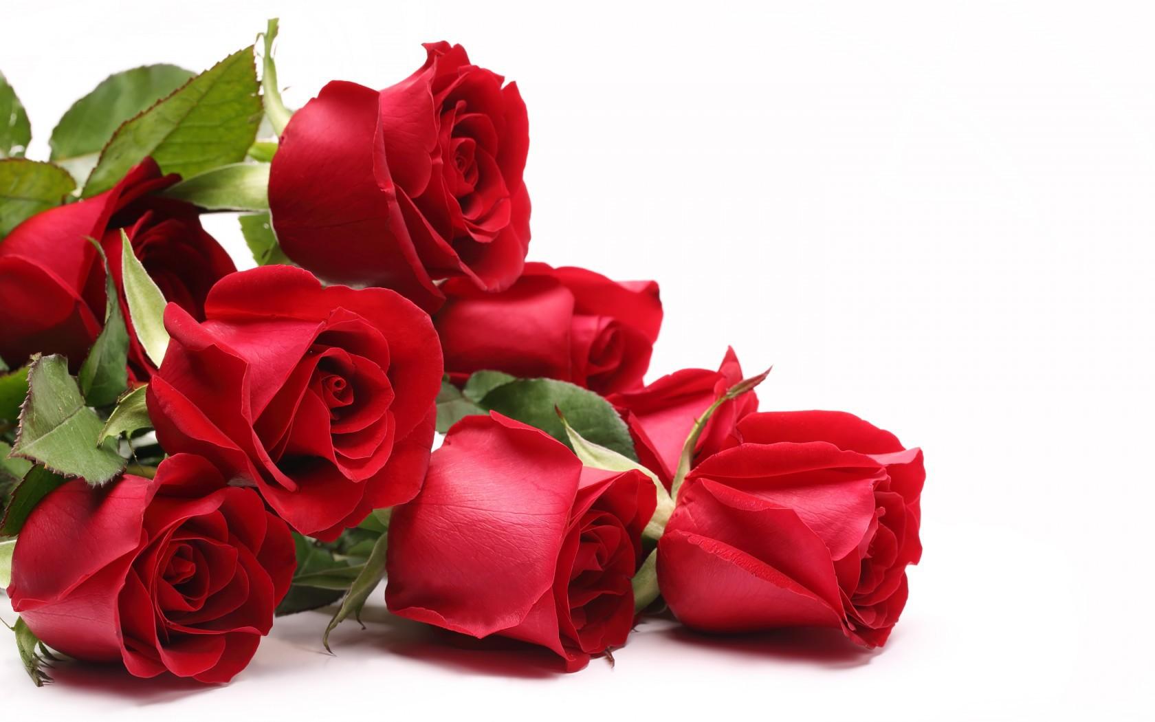 Открытки розы для мужчин