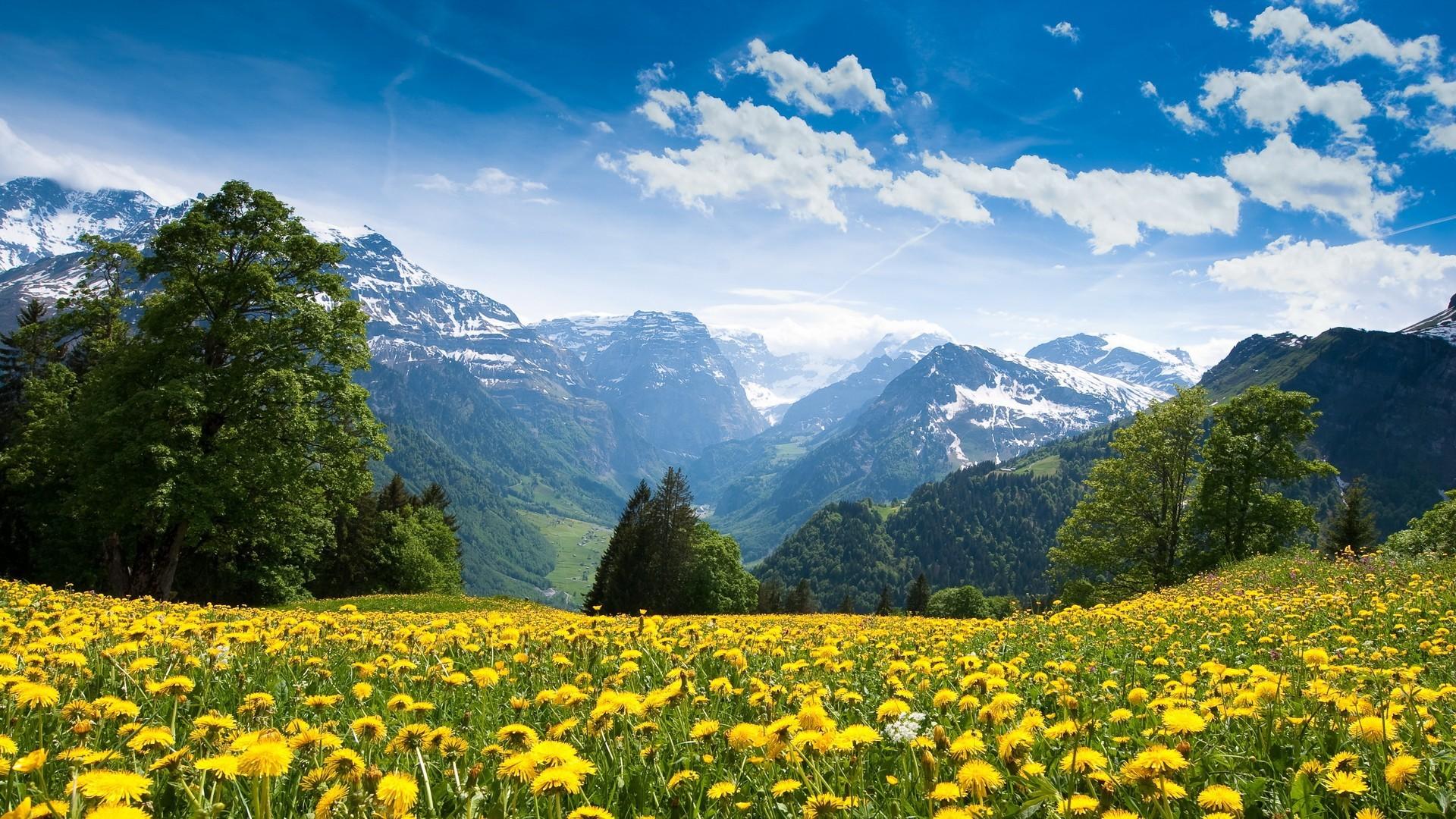 Выходной, самые красивые фото природы