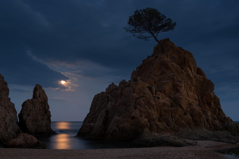 http://www.zastavki.com/pictures/originals/2015/Nature_Lonely_tree_on_the_bare_rock_094111_.jpg