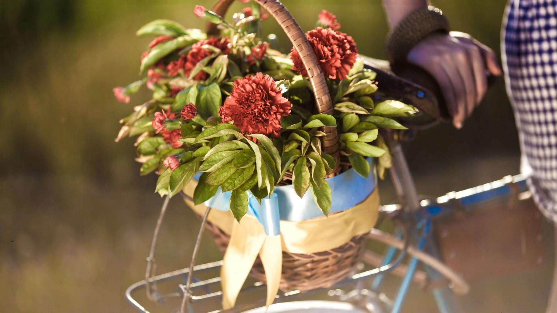 обои на рабочий стол велосипед и цветы семья все родные