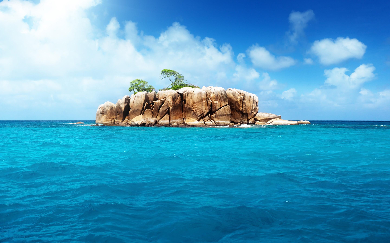 Липарис тихоокеанский фото если
