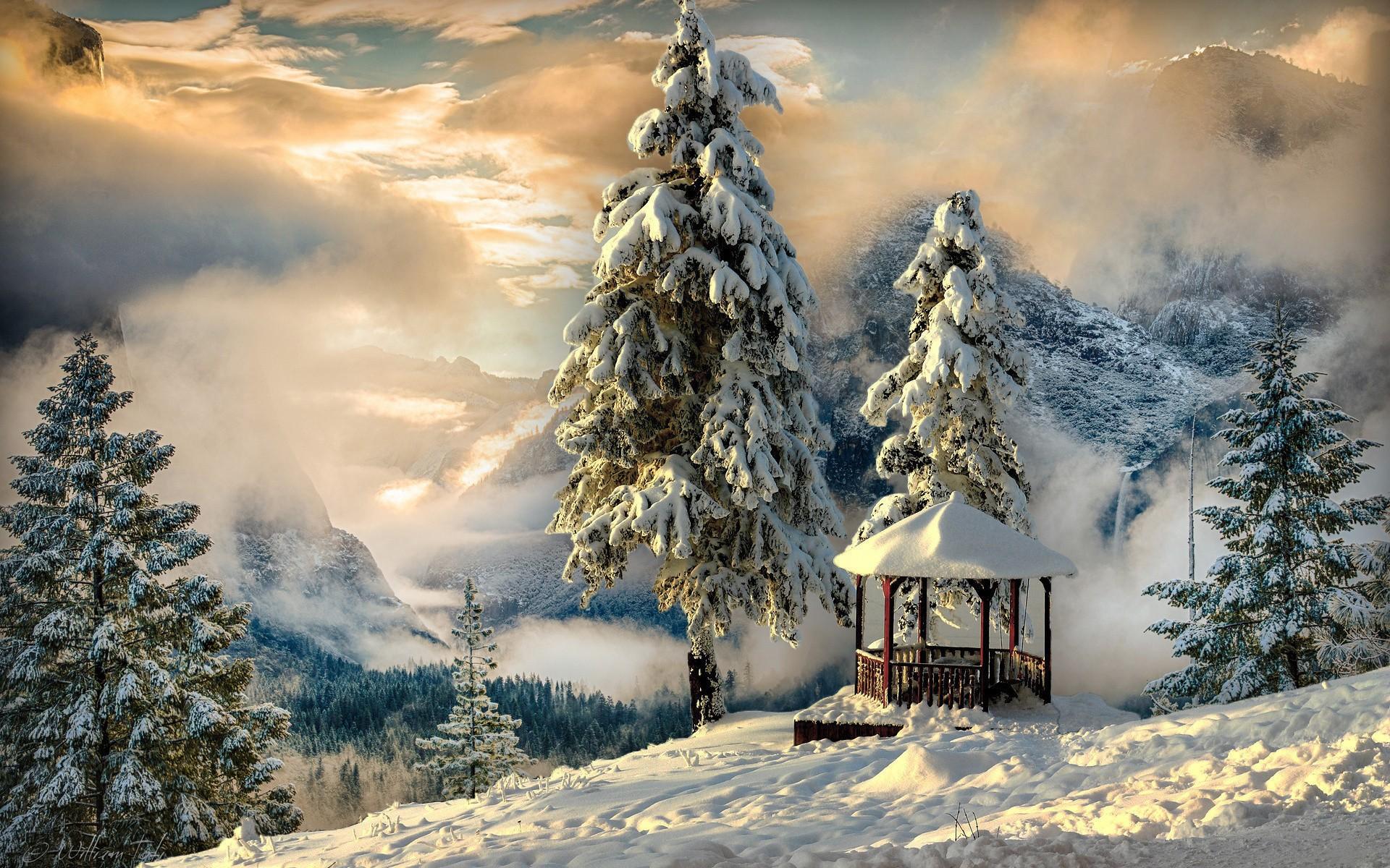 фотообои на комп зима в горах розовый маникюр