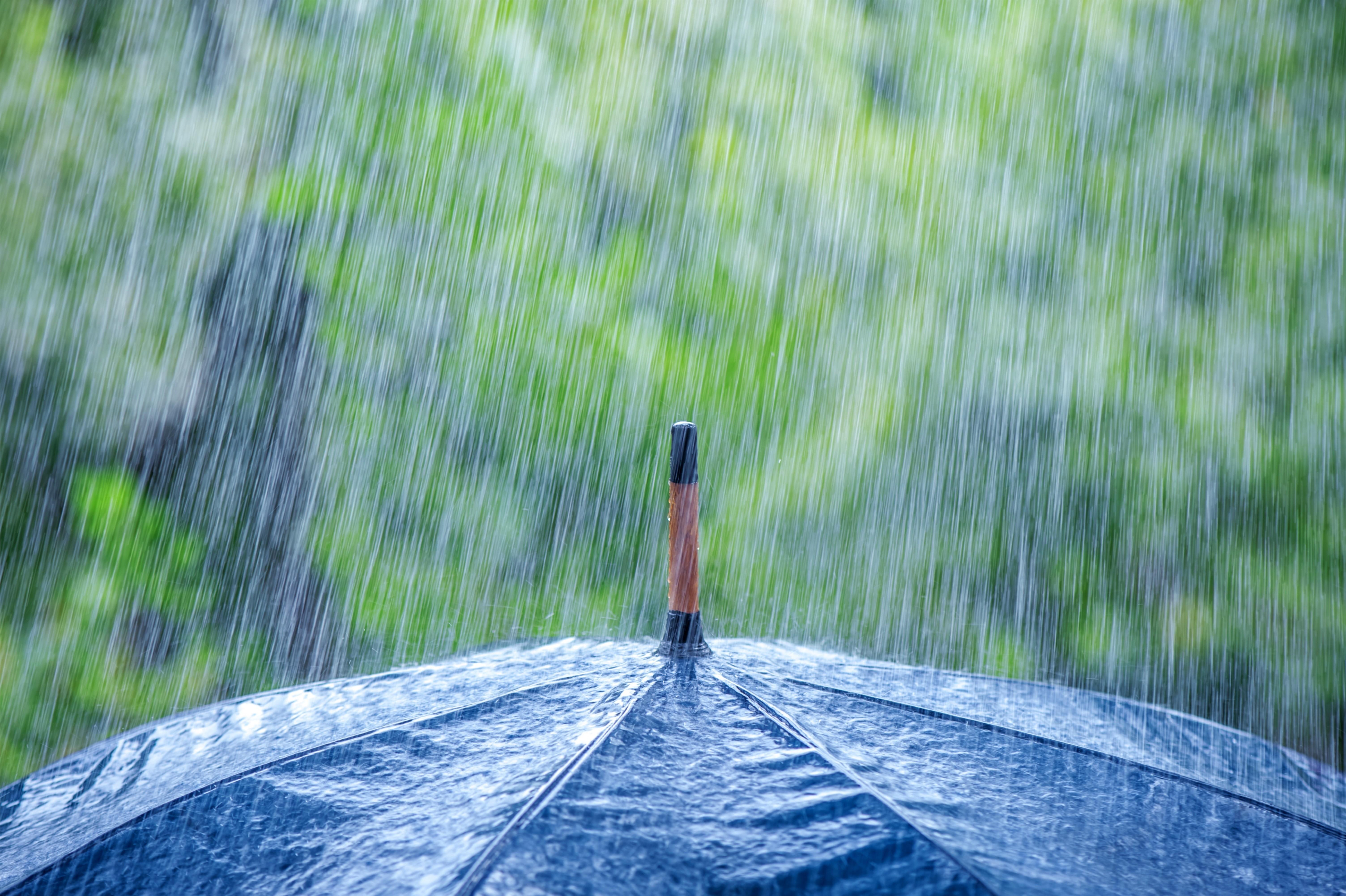 Фото дождя картинки