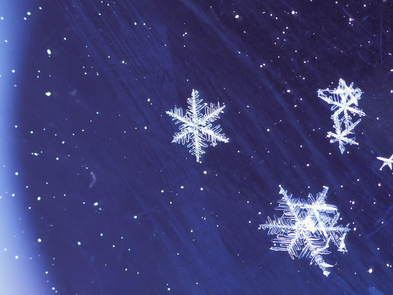 Конкурс картинки, картинки на телефон анимация снег