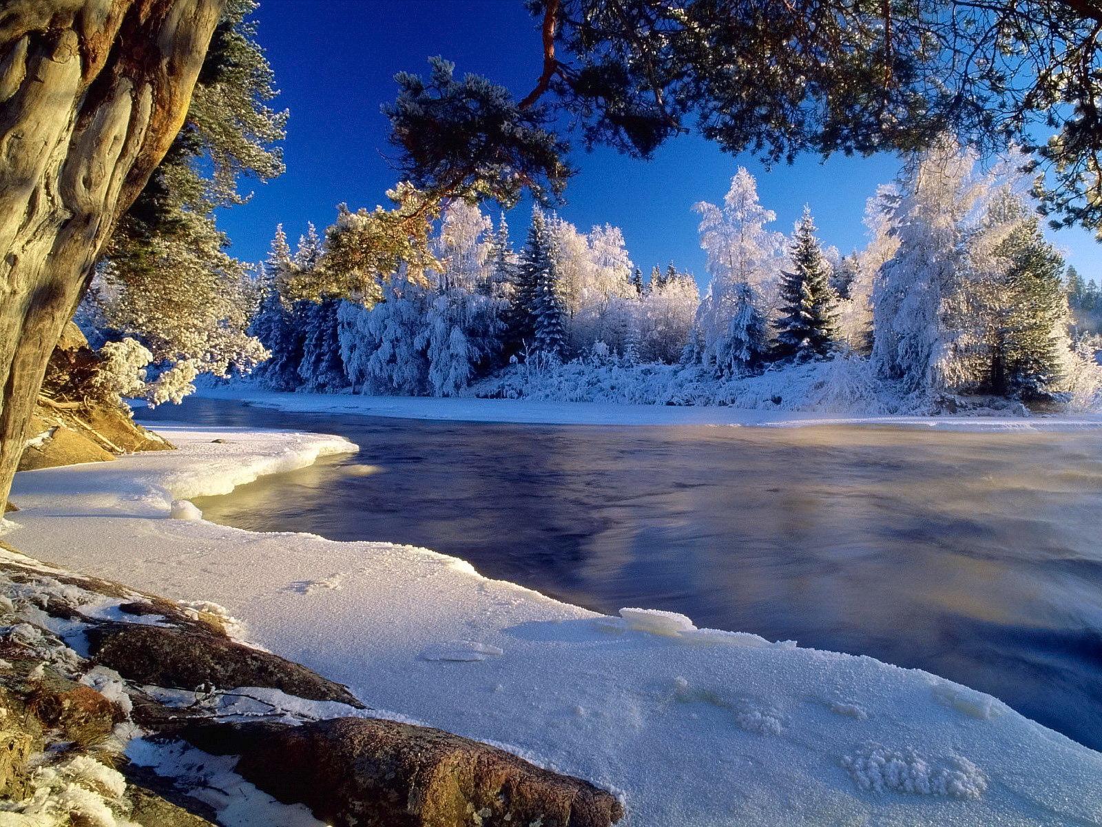 Поделок, открытки с зимой красивые