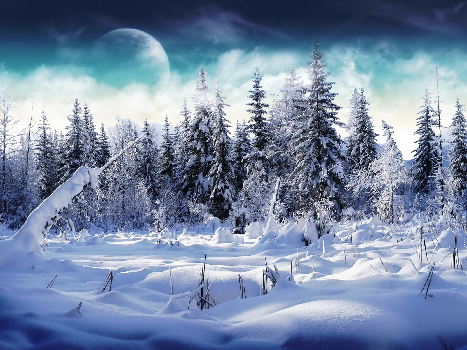 Мая открытка, крутые картинки на зимнюю тему