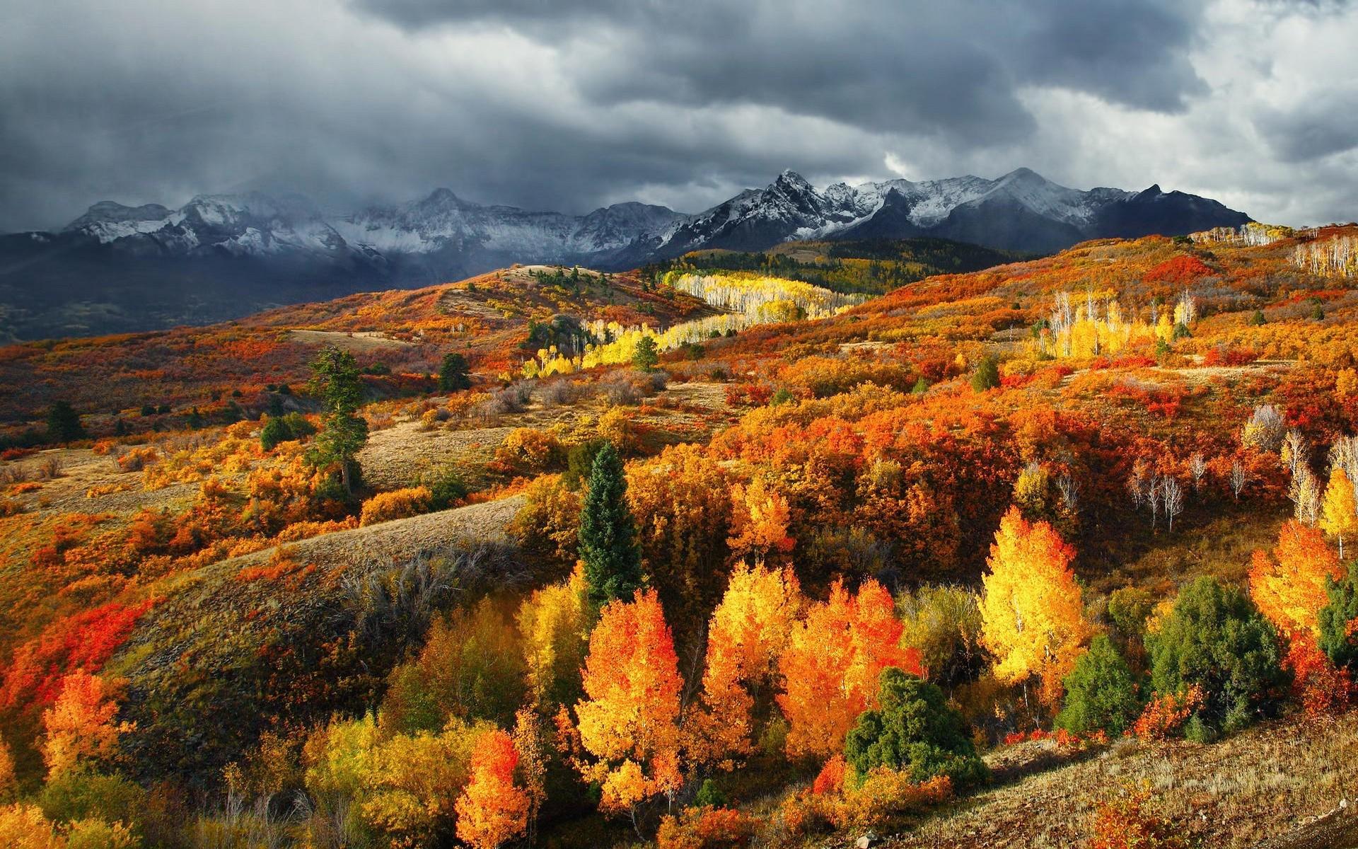 Осень сша картинки