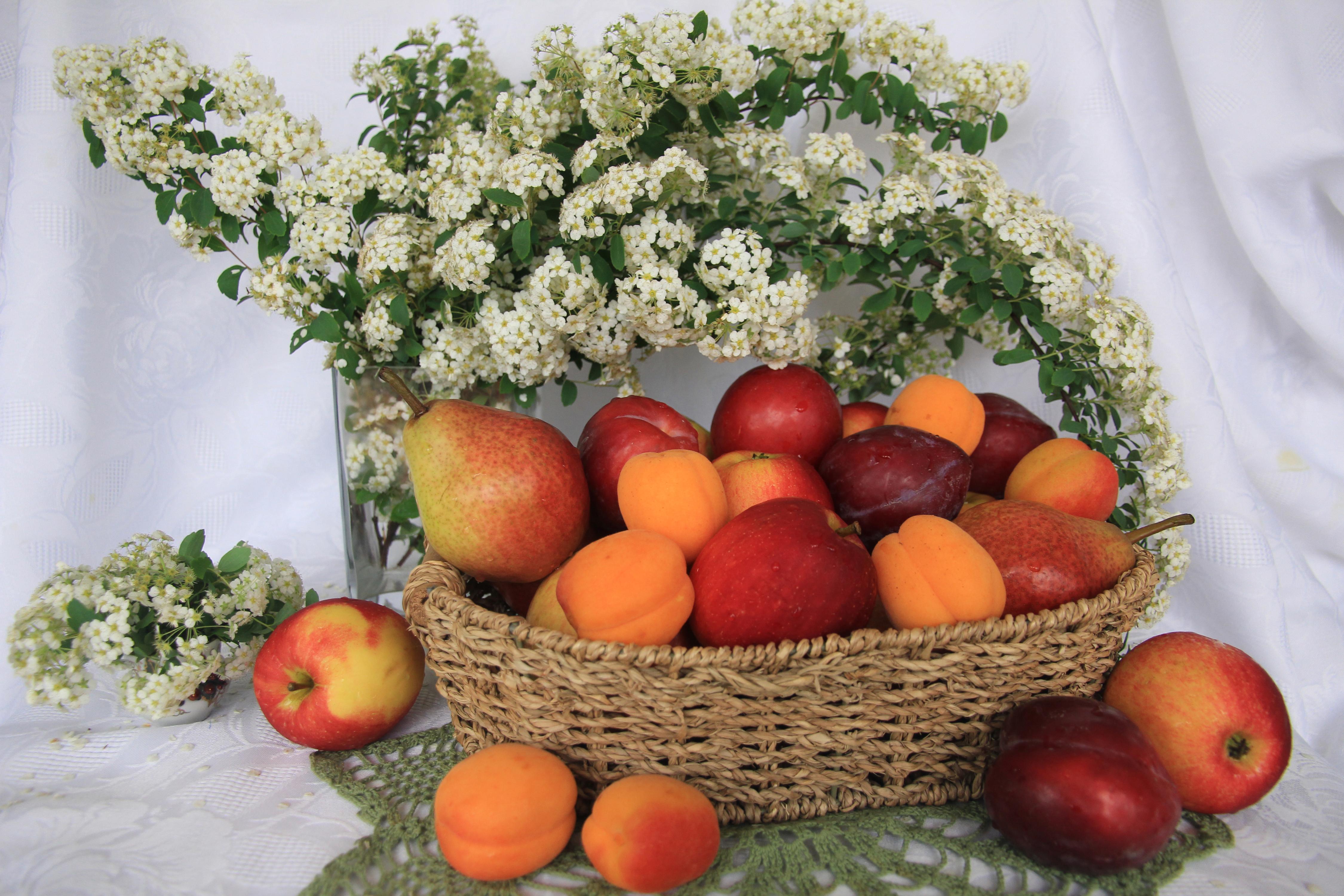 фарм-команду картинки с фруктами и цветами фото анфисе был лёгкий