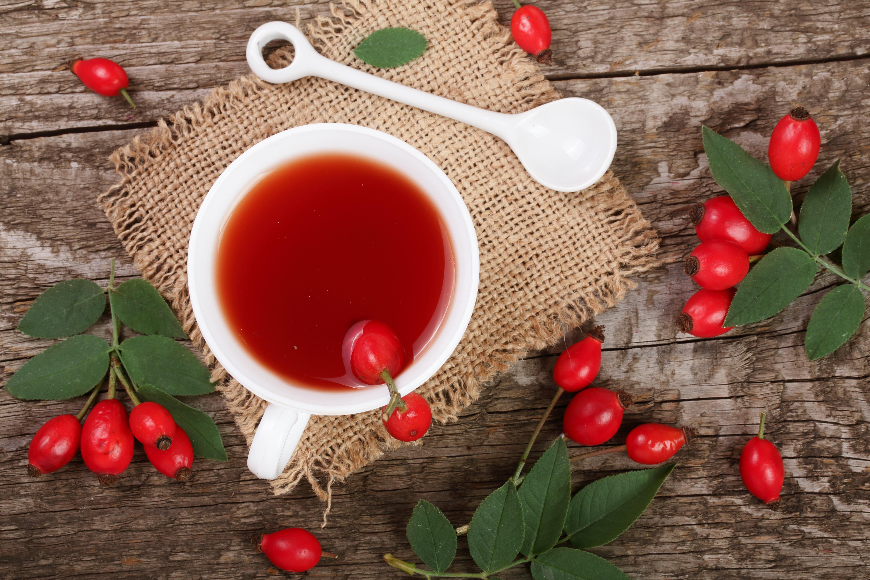 Чай с шиповником картинка