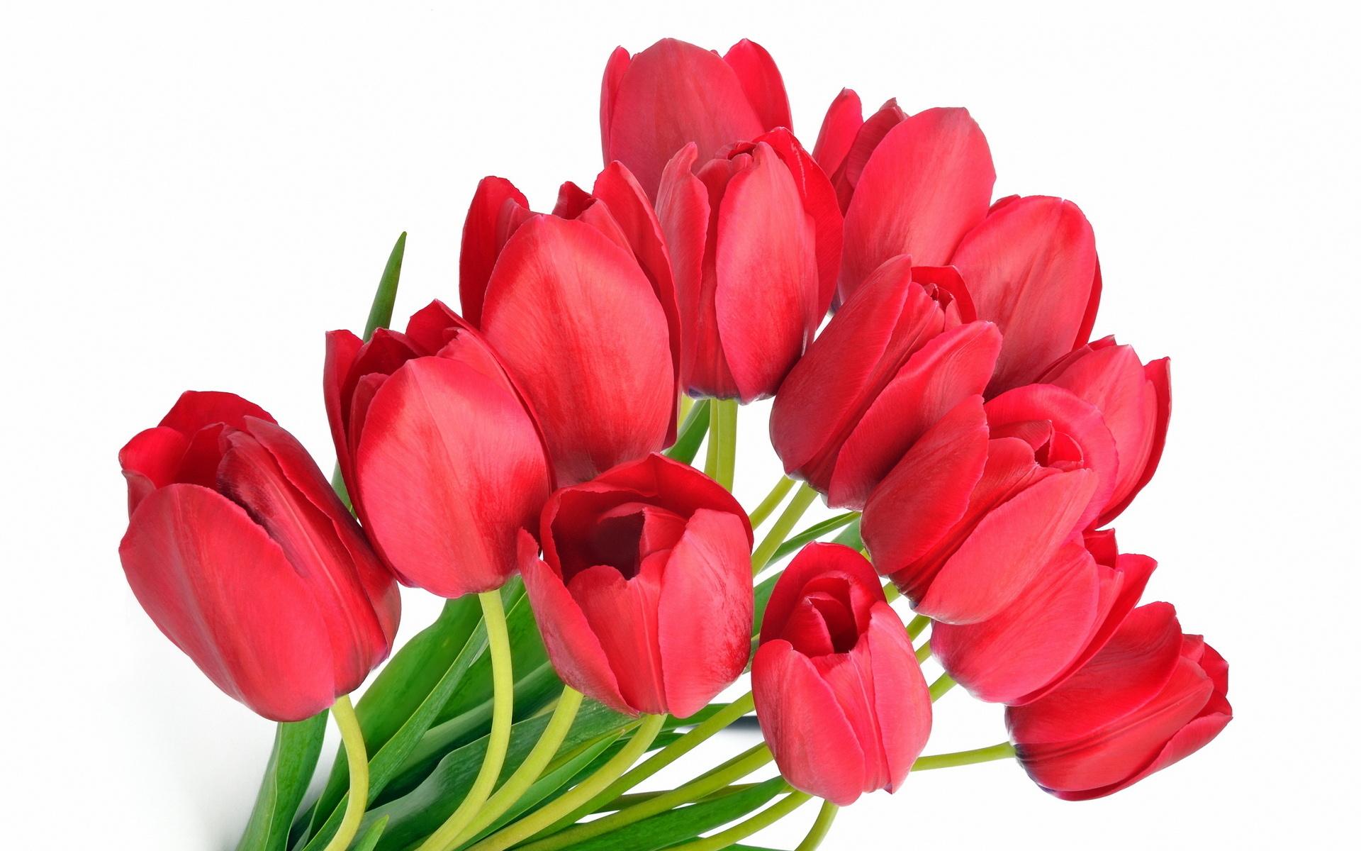 Поздравления с 8 марта в прозе открытки, лого приятных выходных