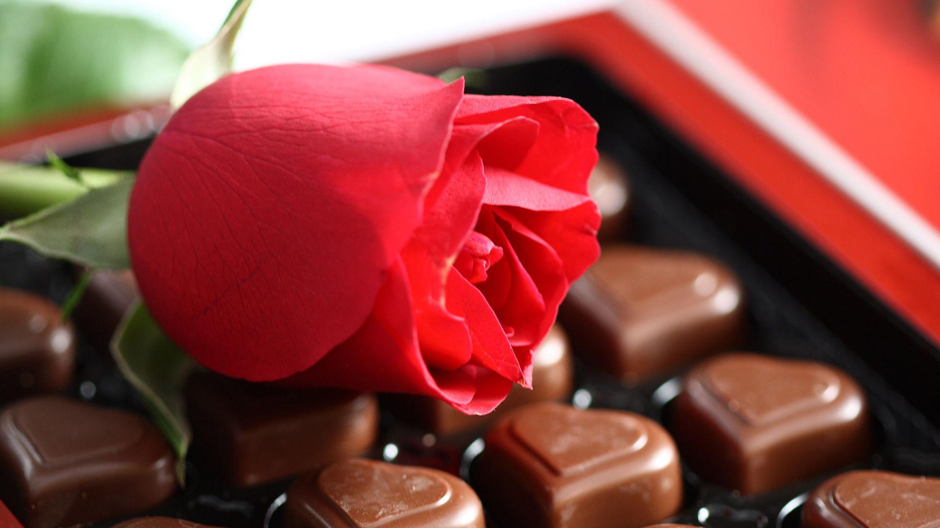 Картинки цветы с конфетами