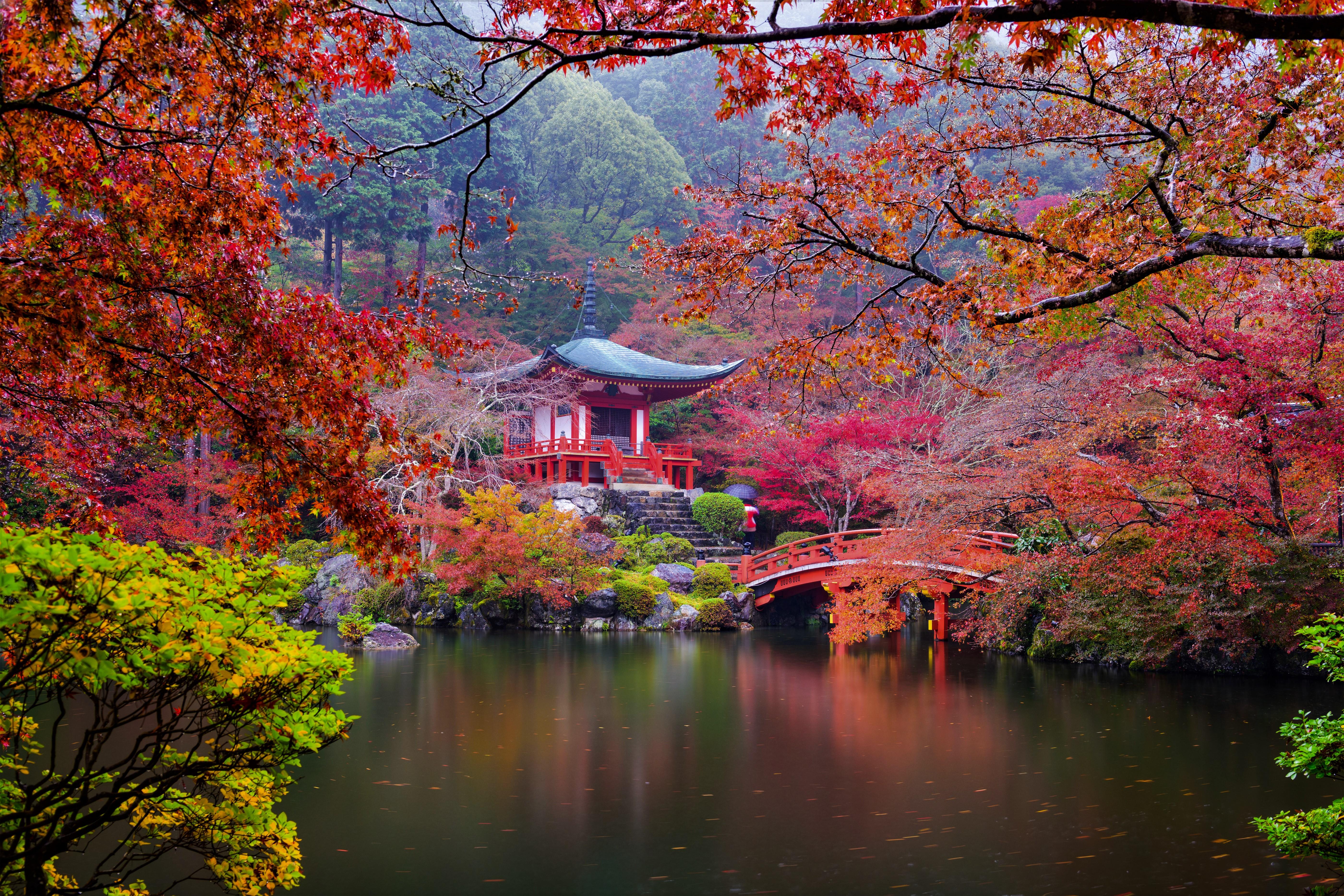 Фото японских пейзажей питание внимательный