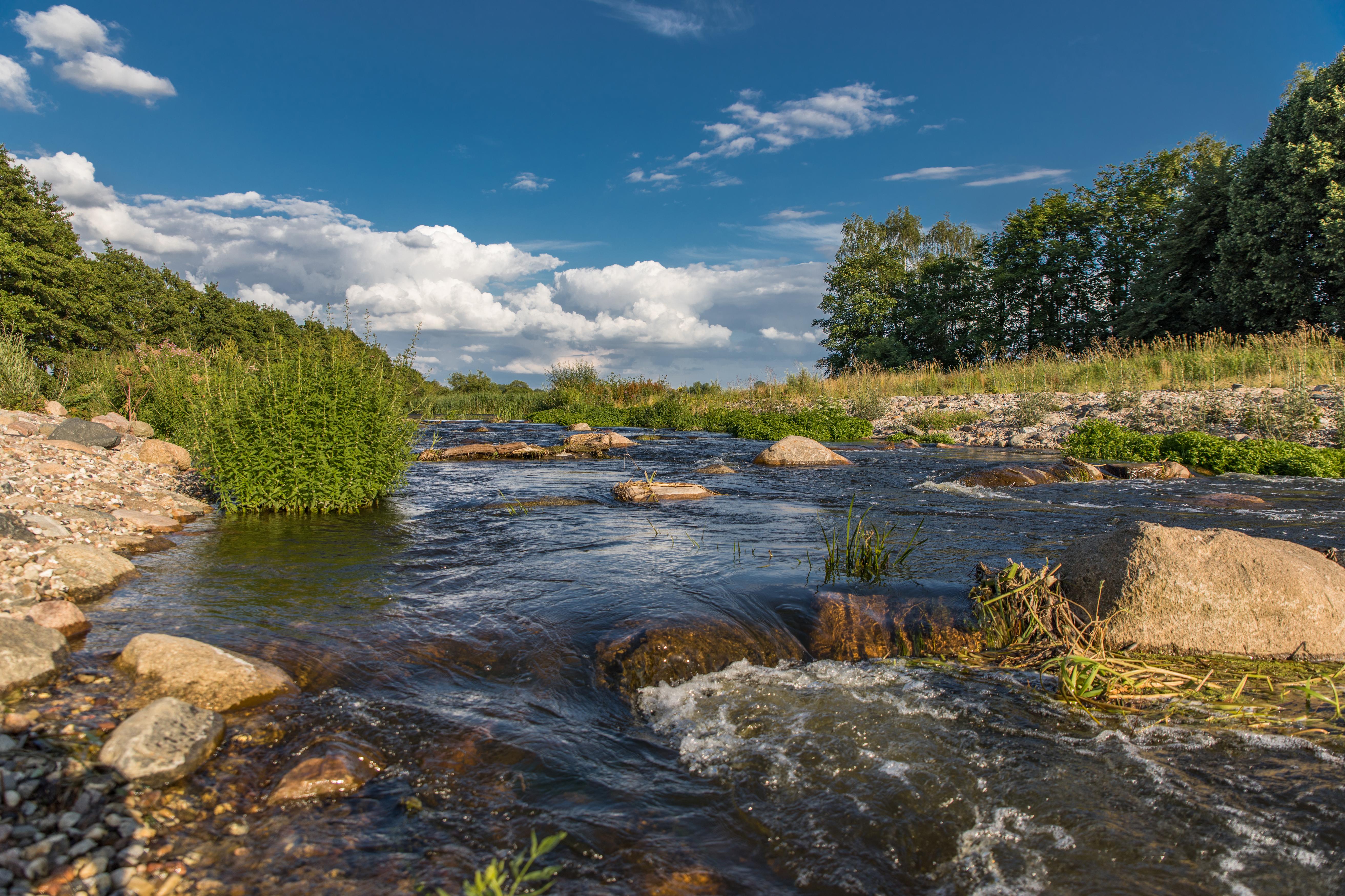 Вода реки картинка