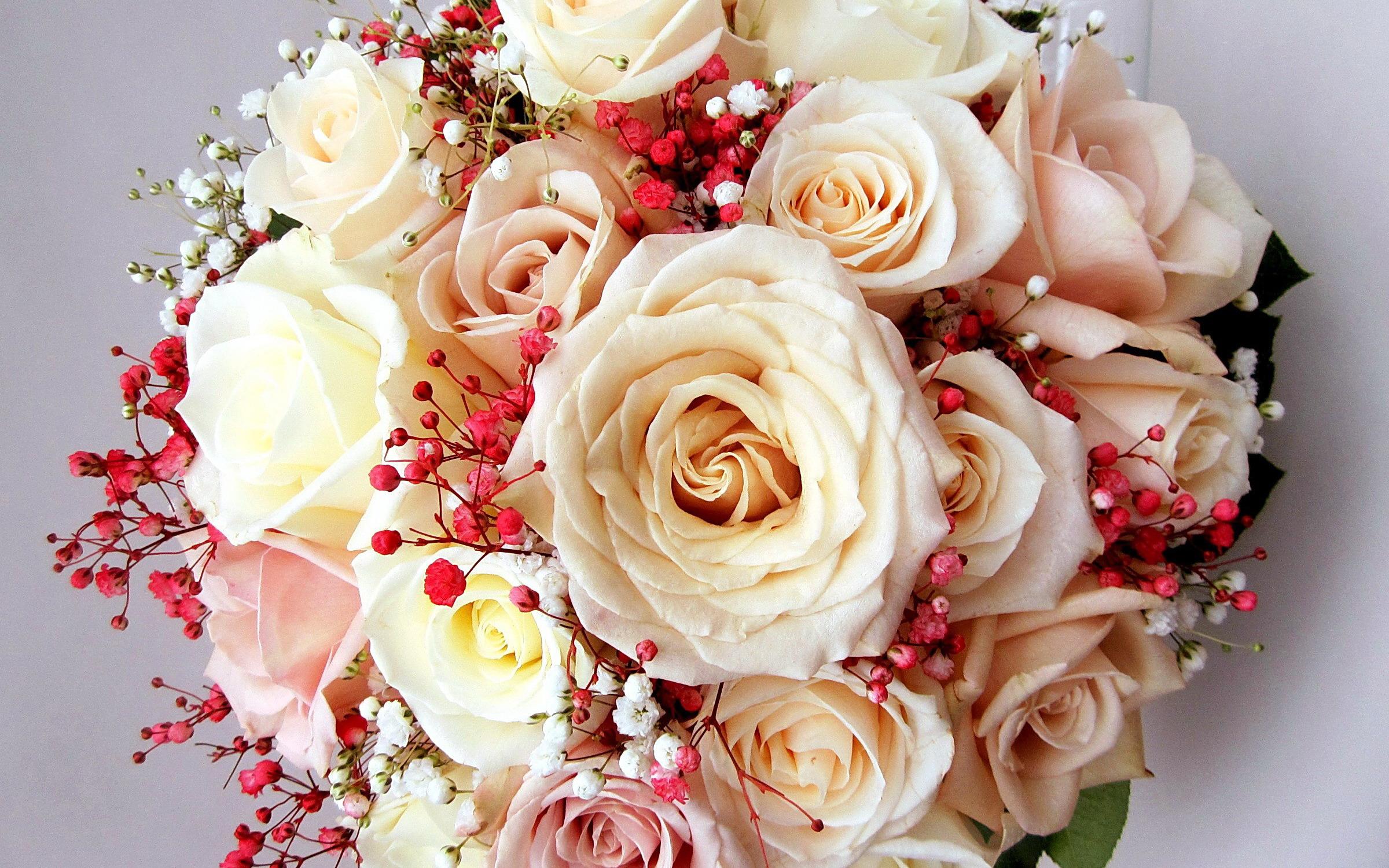 Клен фото цветка вот