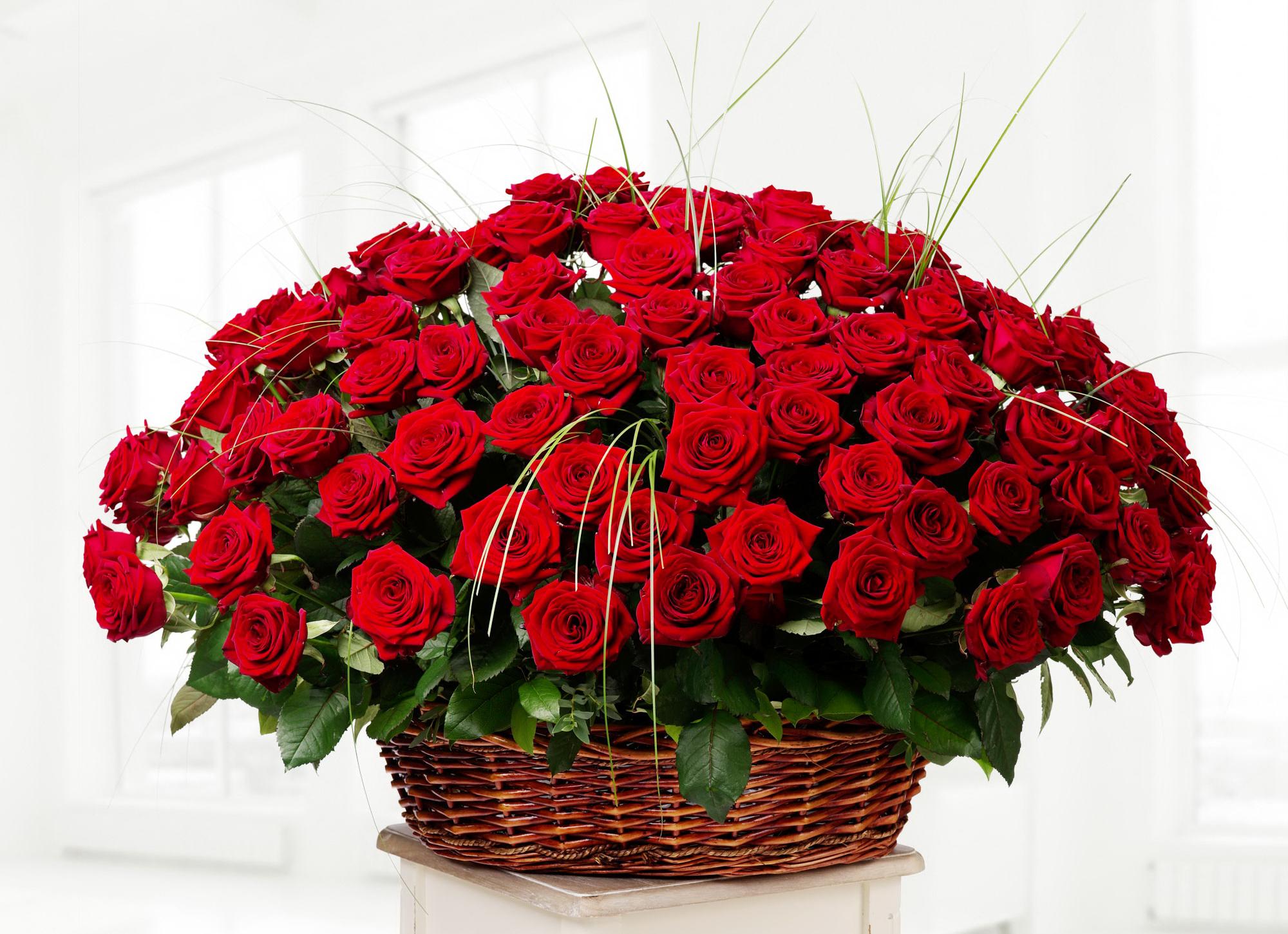 Цветы розы красивые букет красные фото, цветы