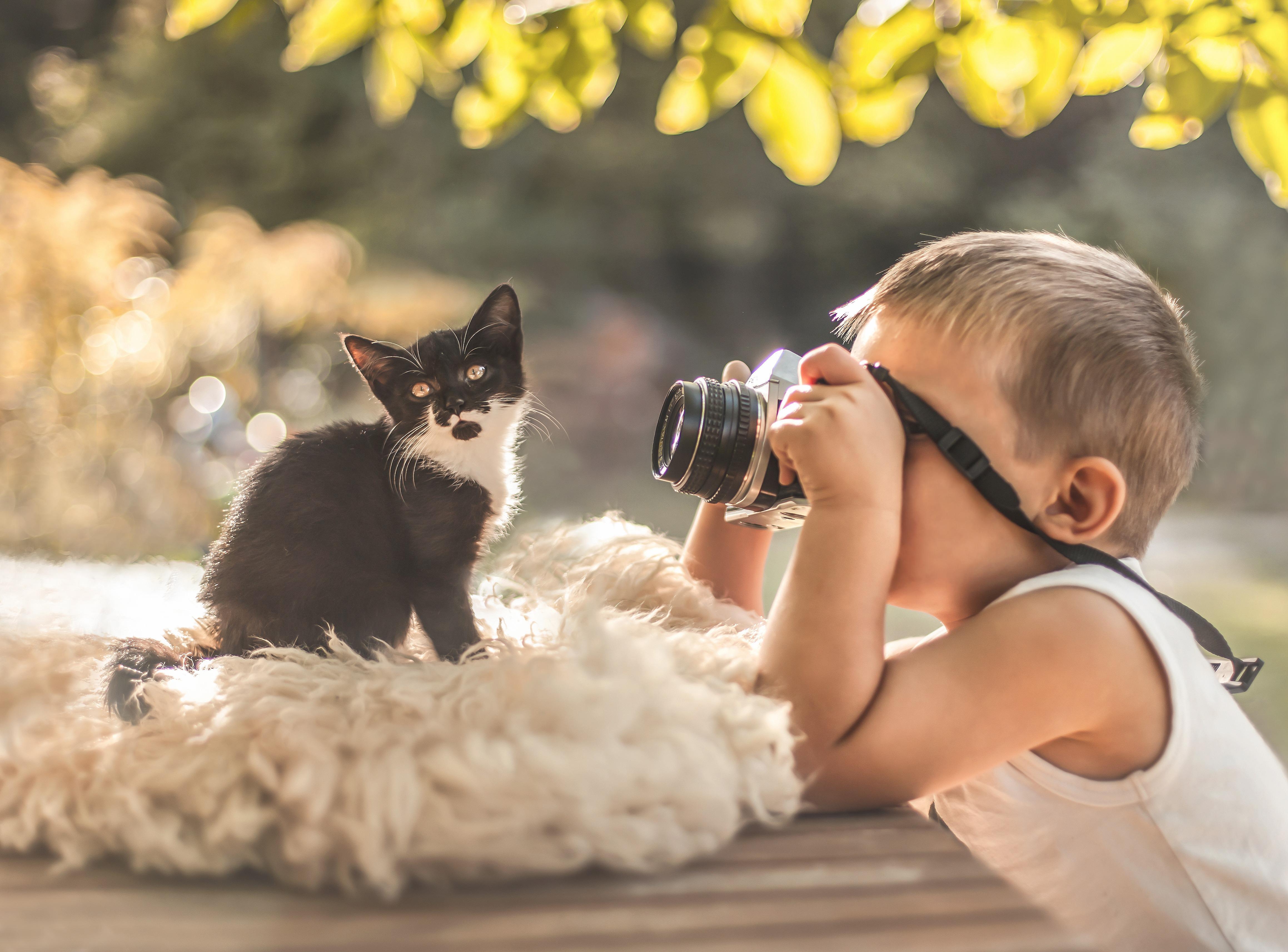 Днем, картинки дети с животными