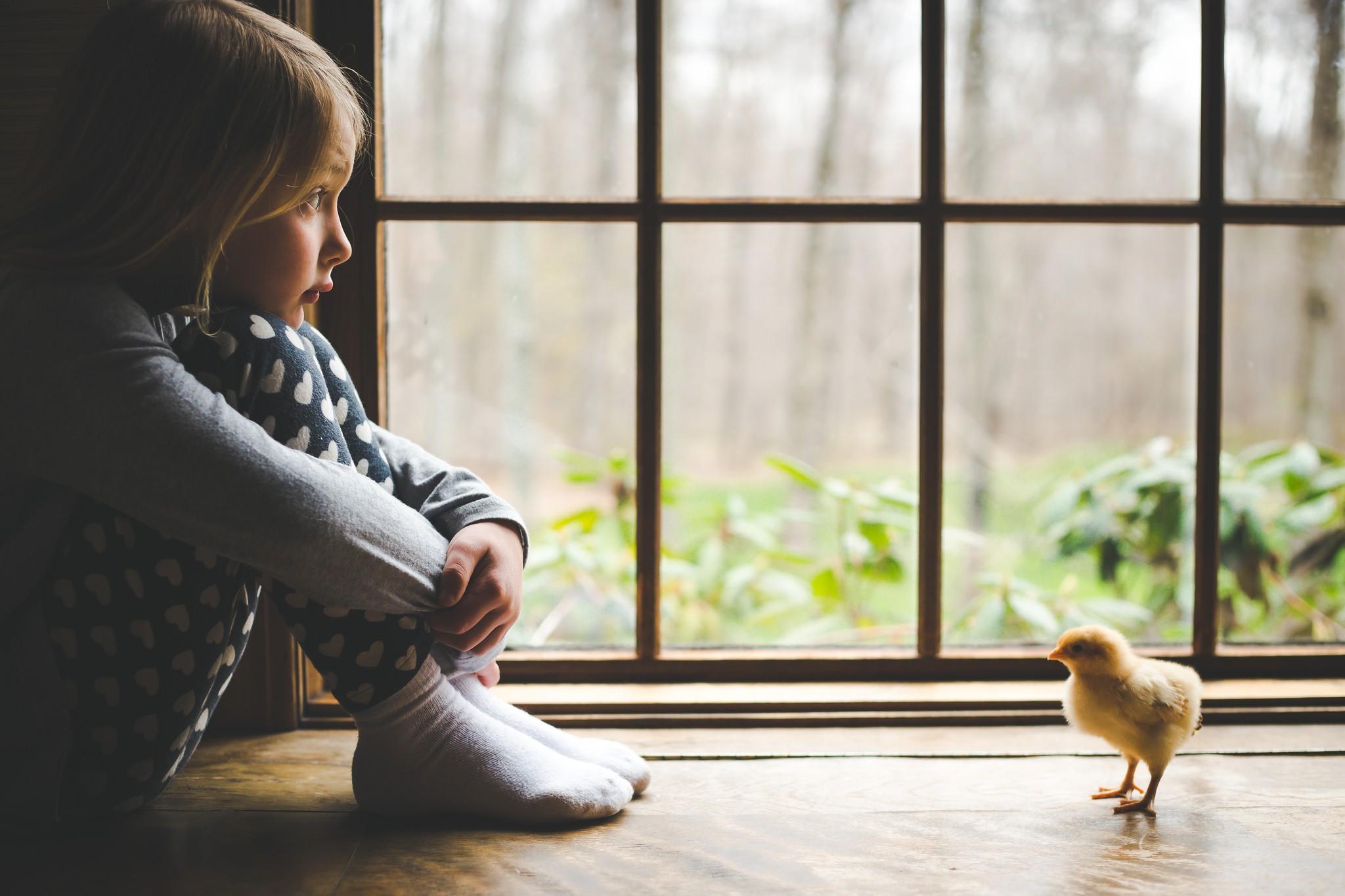 Картинки ребенок у окошка