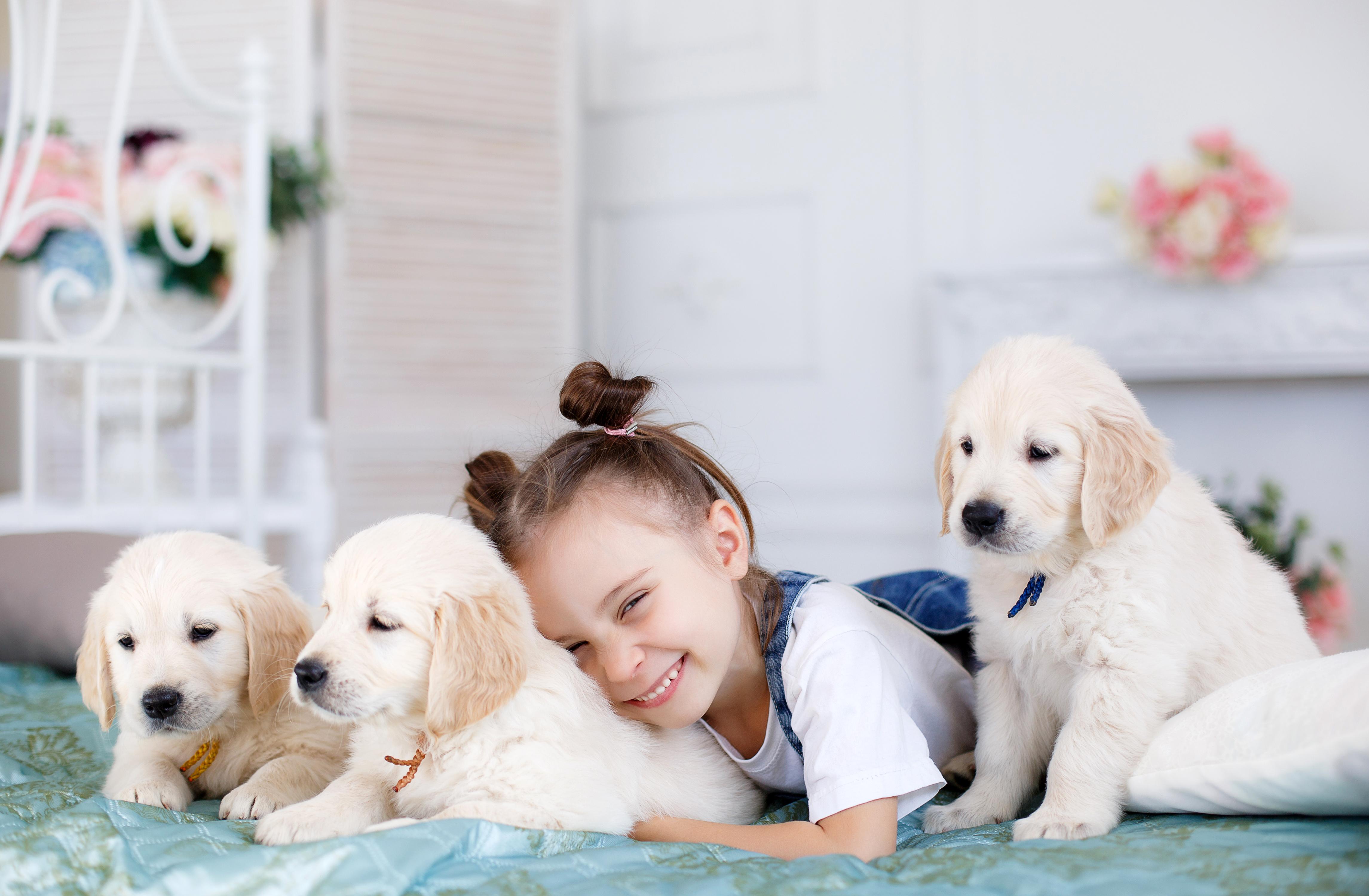 Фотосессия для домашних животных