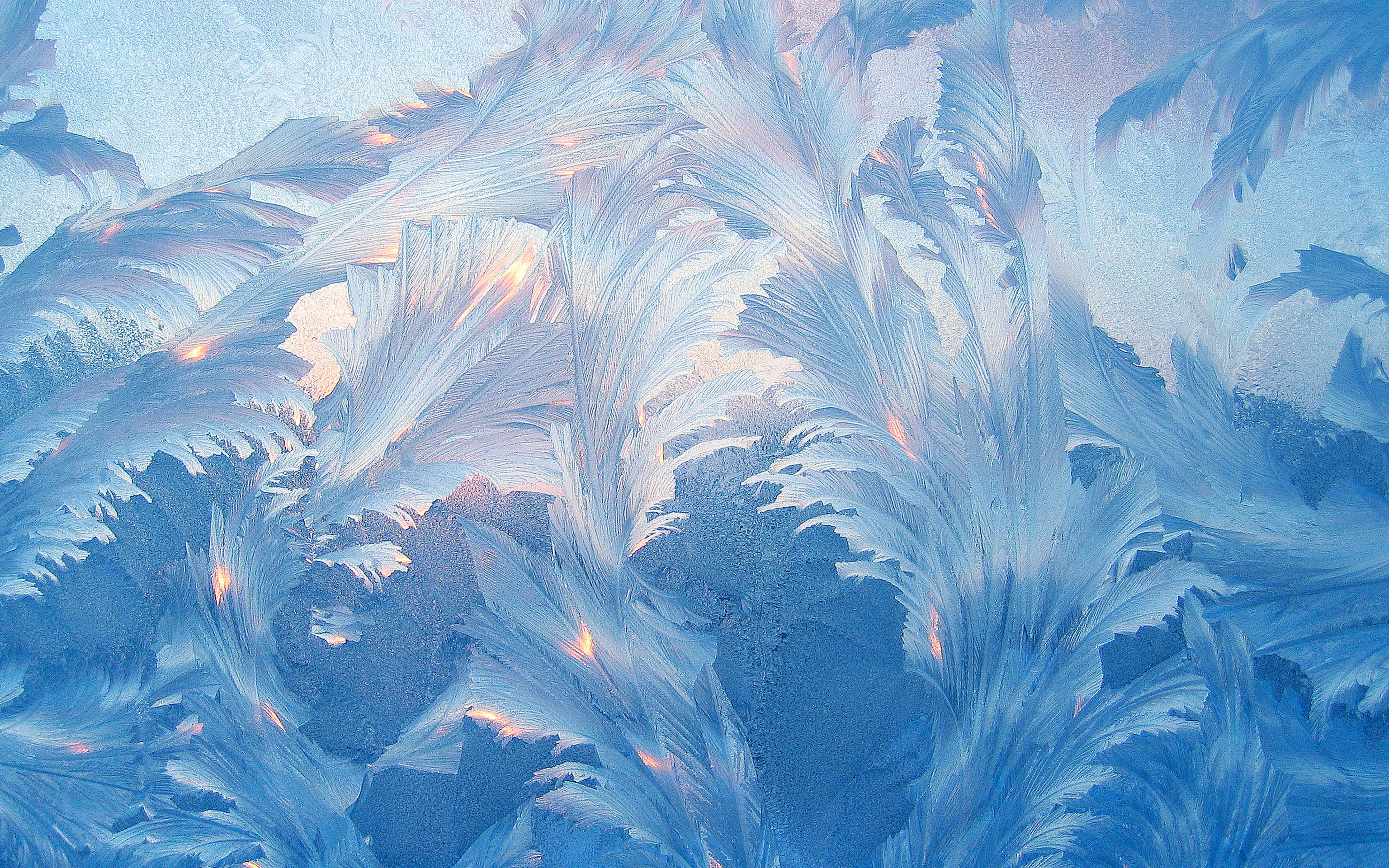морозные узоры картинка правильно