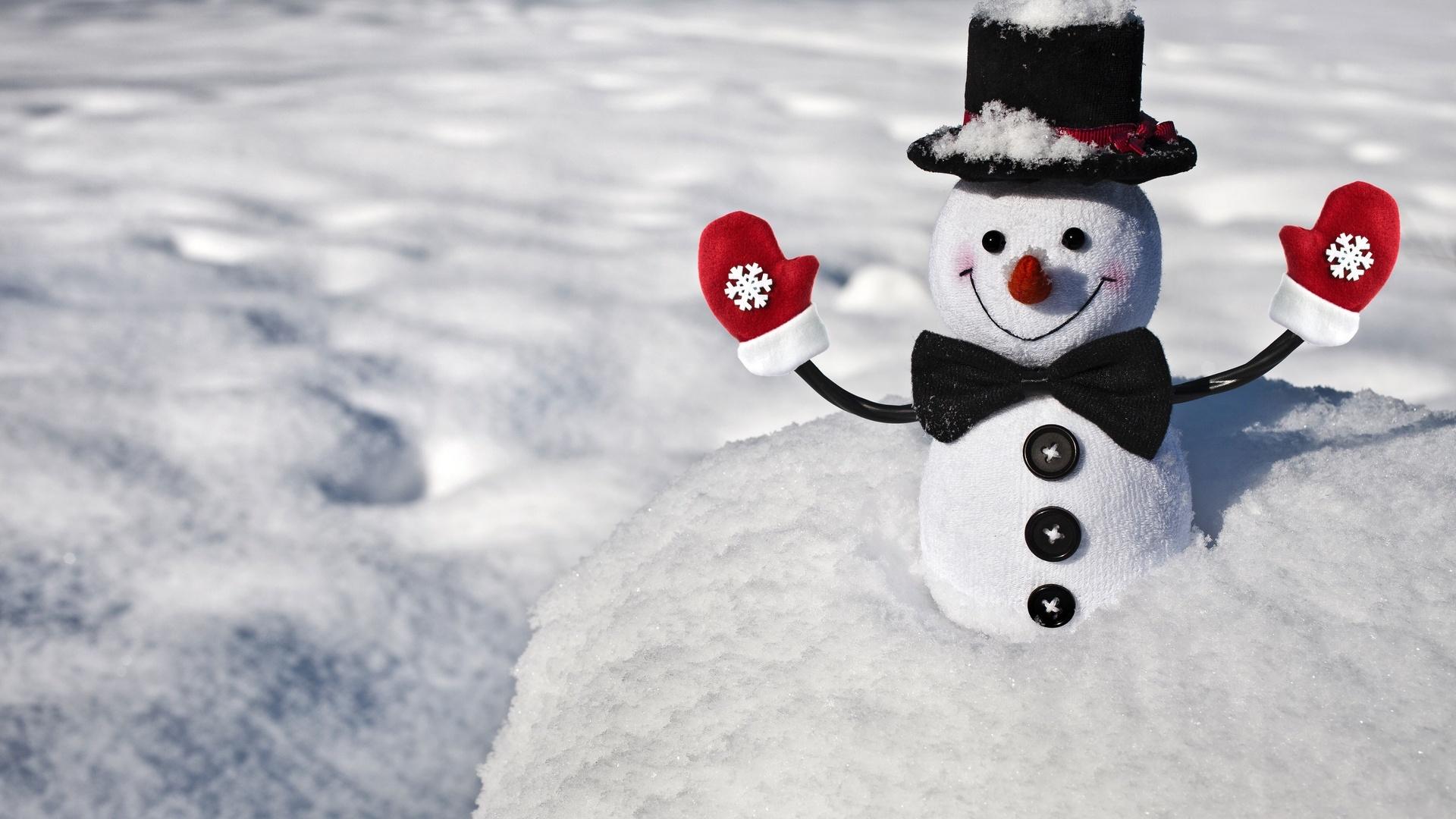 Поздравления днем, картинки смешной снеговик