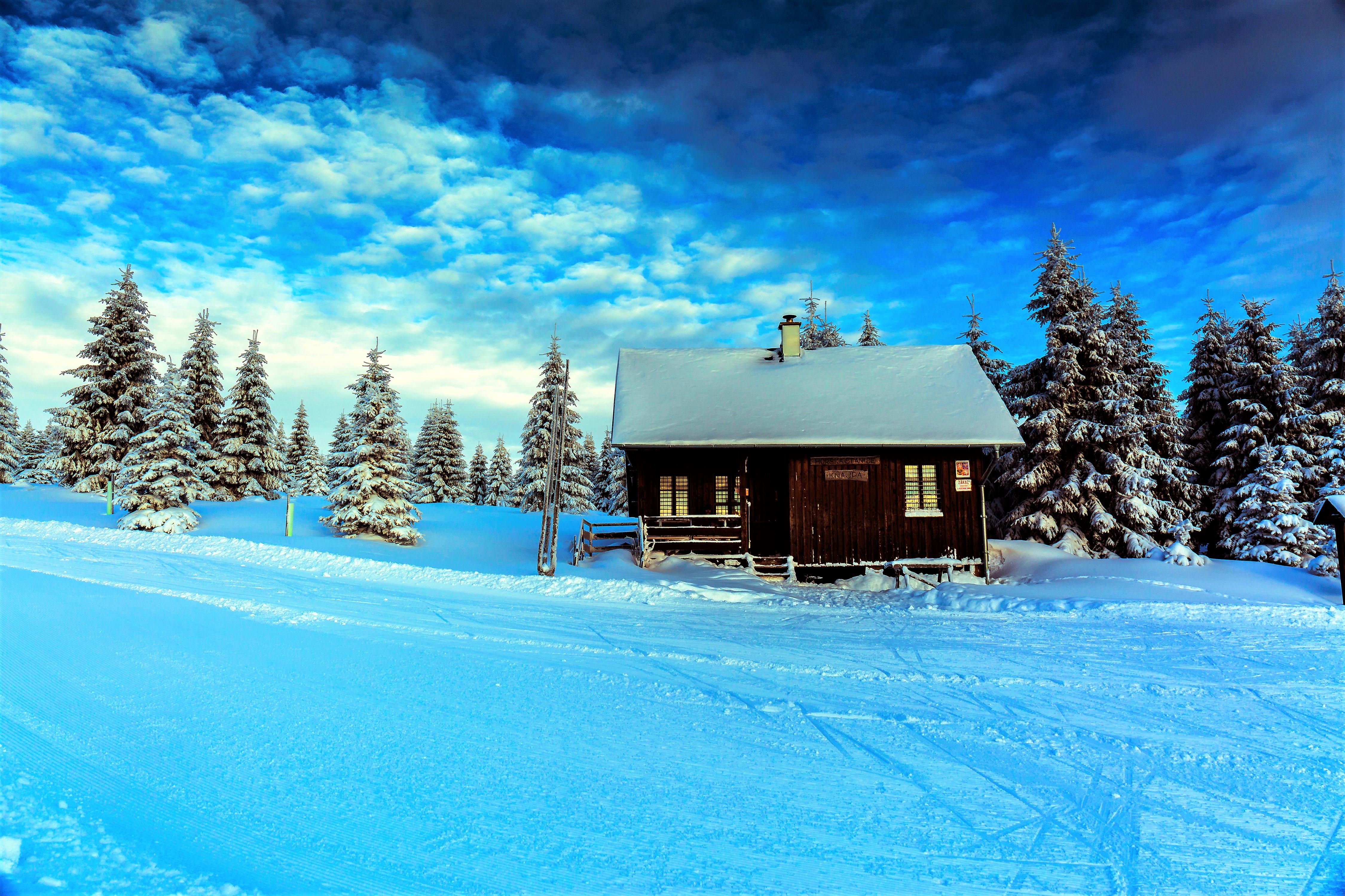 Красивые картинки с пейзажами зимы, ручной работы