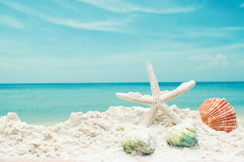 Замёрзнуть на пляже во сне — к срыву запланированного отпуска.