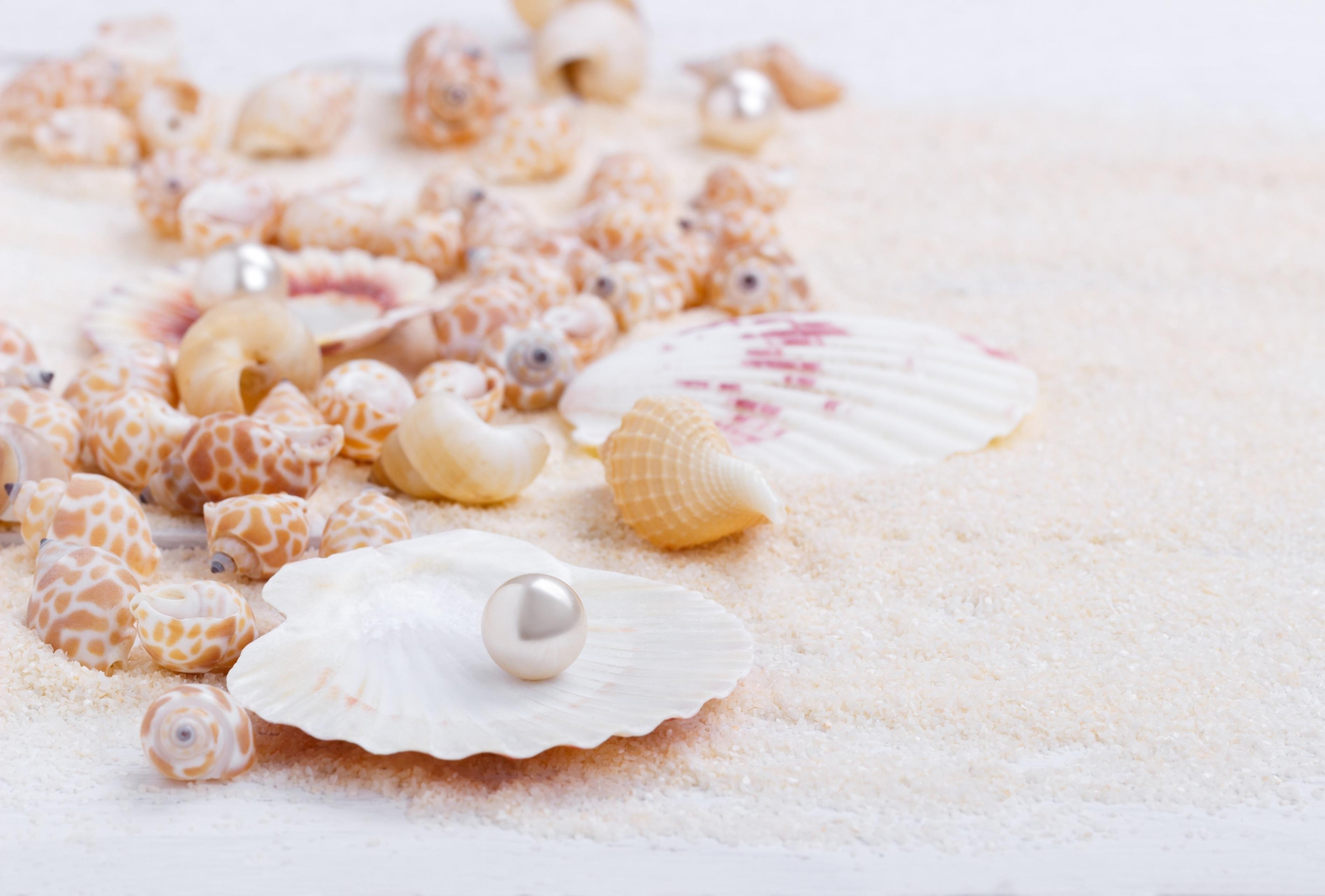 предлагает белый морской песок фото отважились связаться разделкой