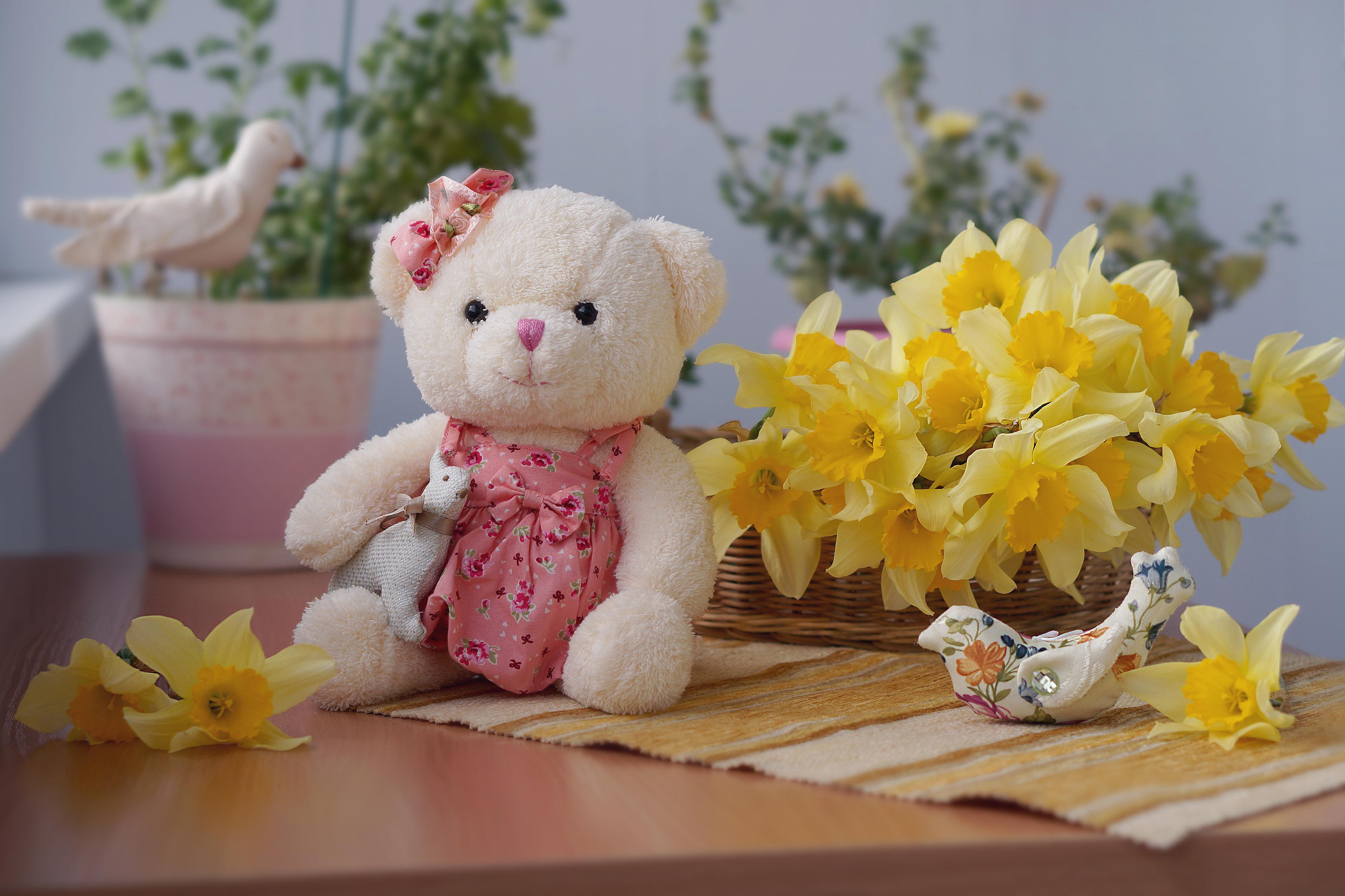 задали фото с цветами и мишками специалисты
