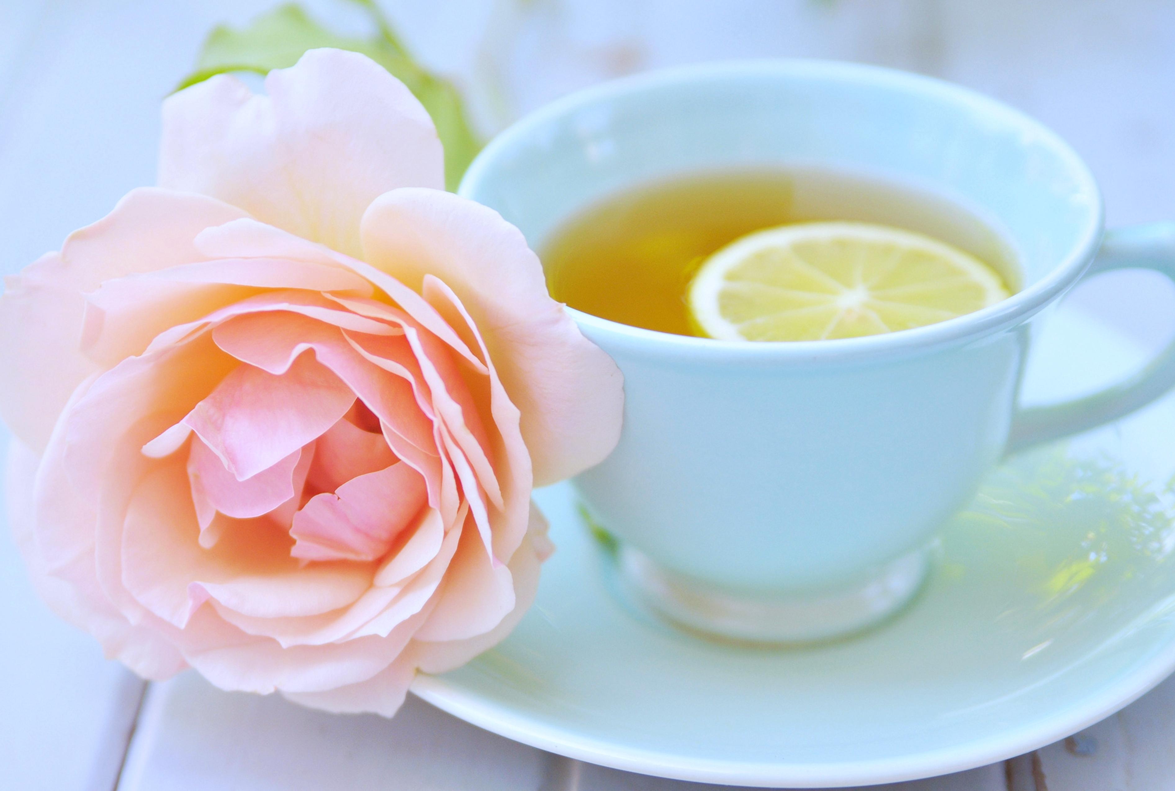 Открытка чайная чашка, стихами